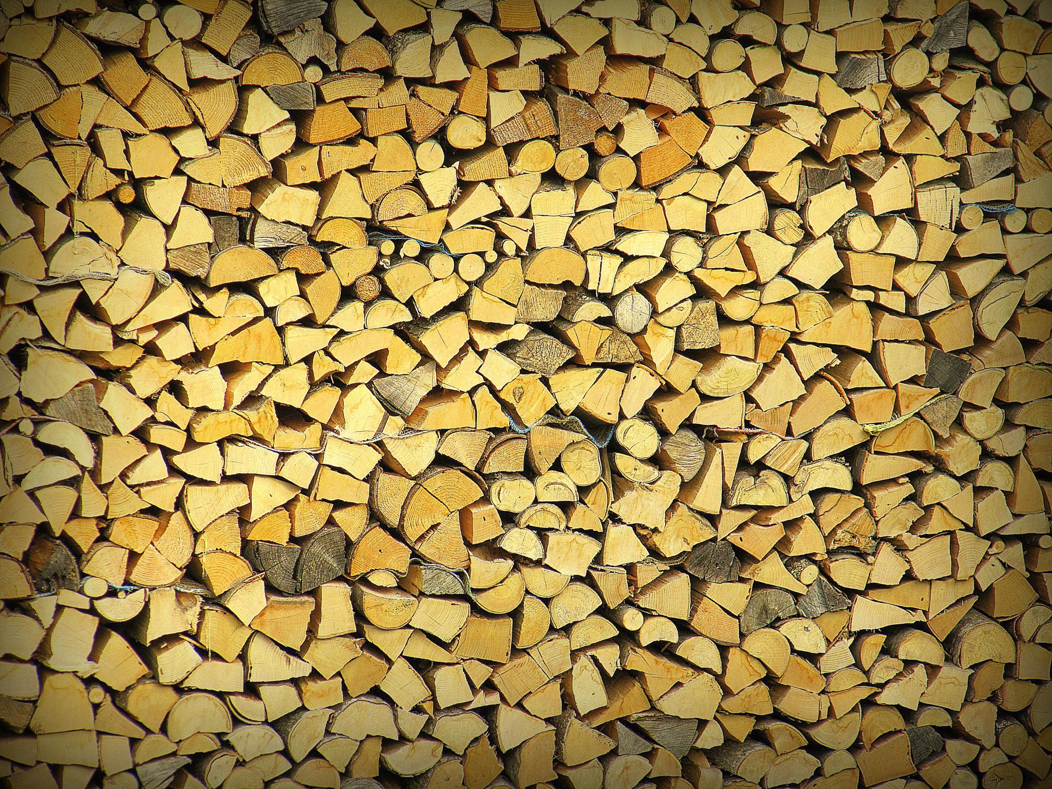 Wood anyone? by raymond.vanharen