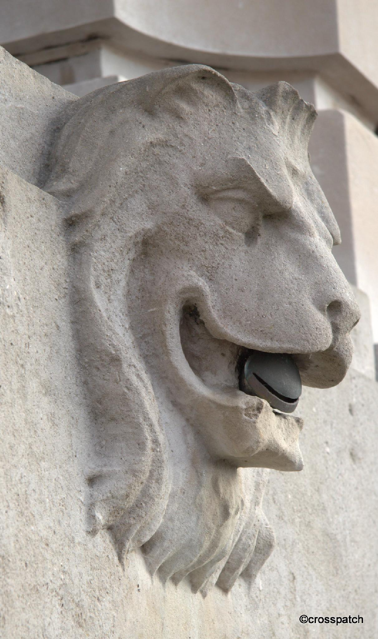 Portland stone lion by lison Townley