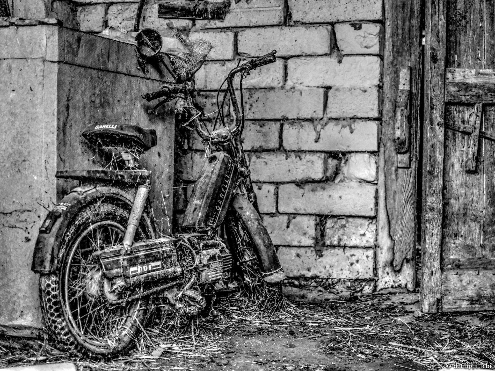cyclomotor garelli by defilippifabio