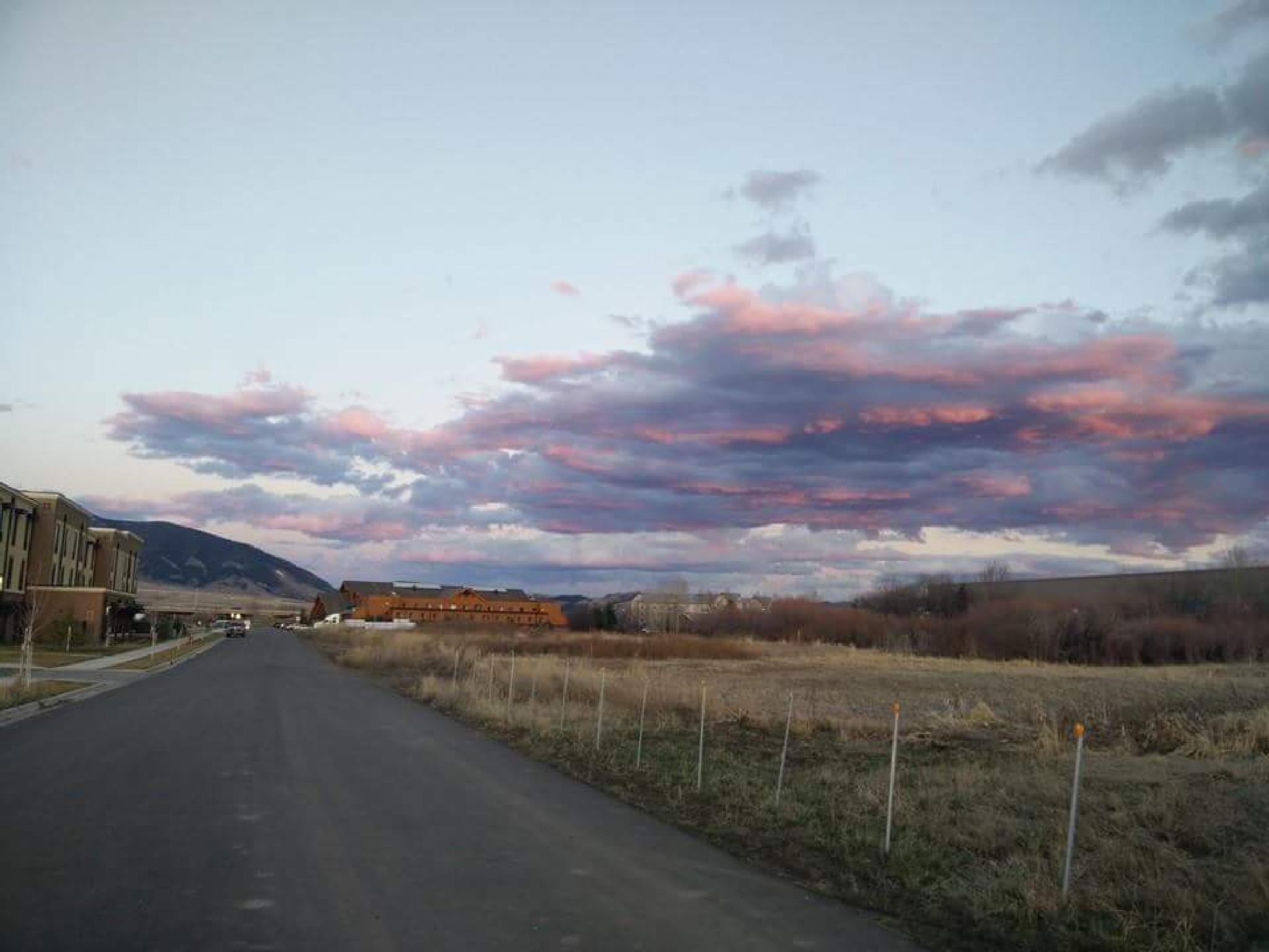 Road Trip by Mrokusek