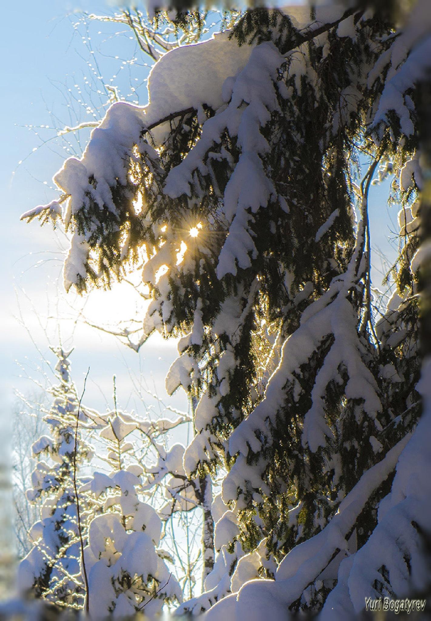 Мороз и солнце by Юрий Богатырев