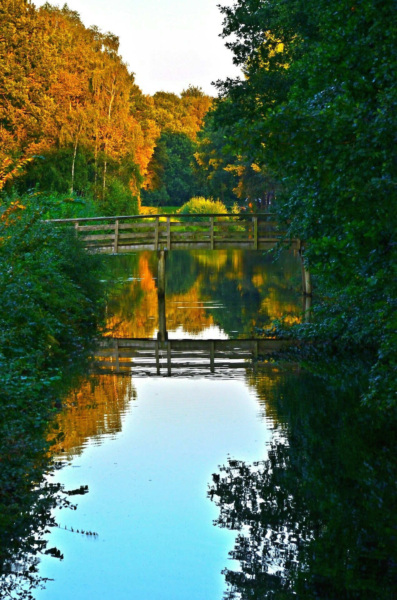 Park Borgerswold Veendam in the evening by Henk Meima