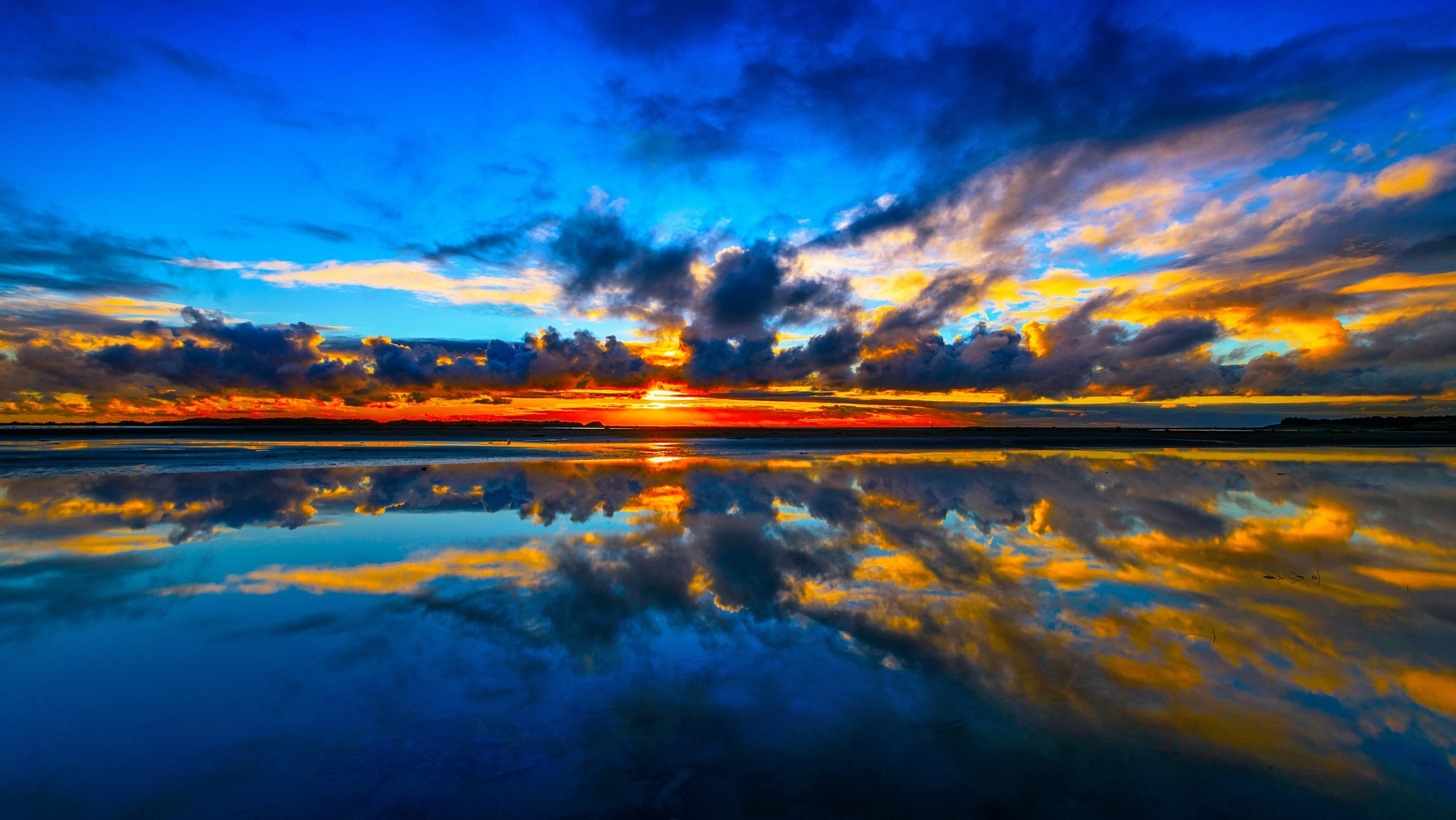 Kuku Beach by Lauren Cohany