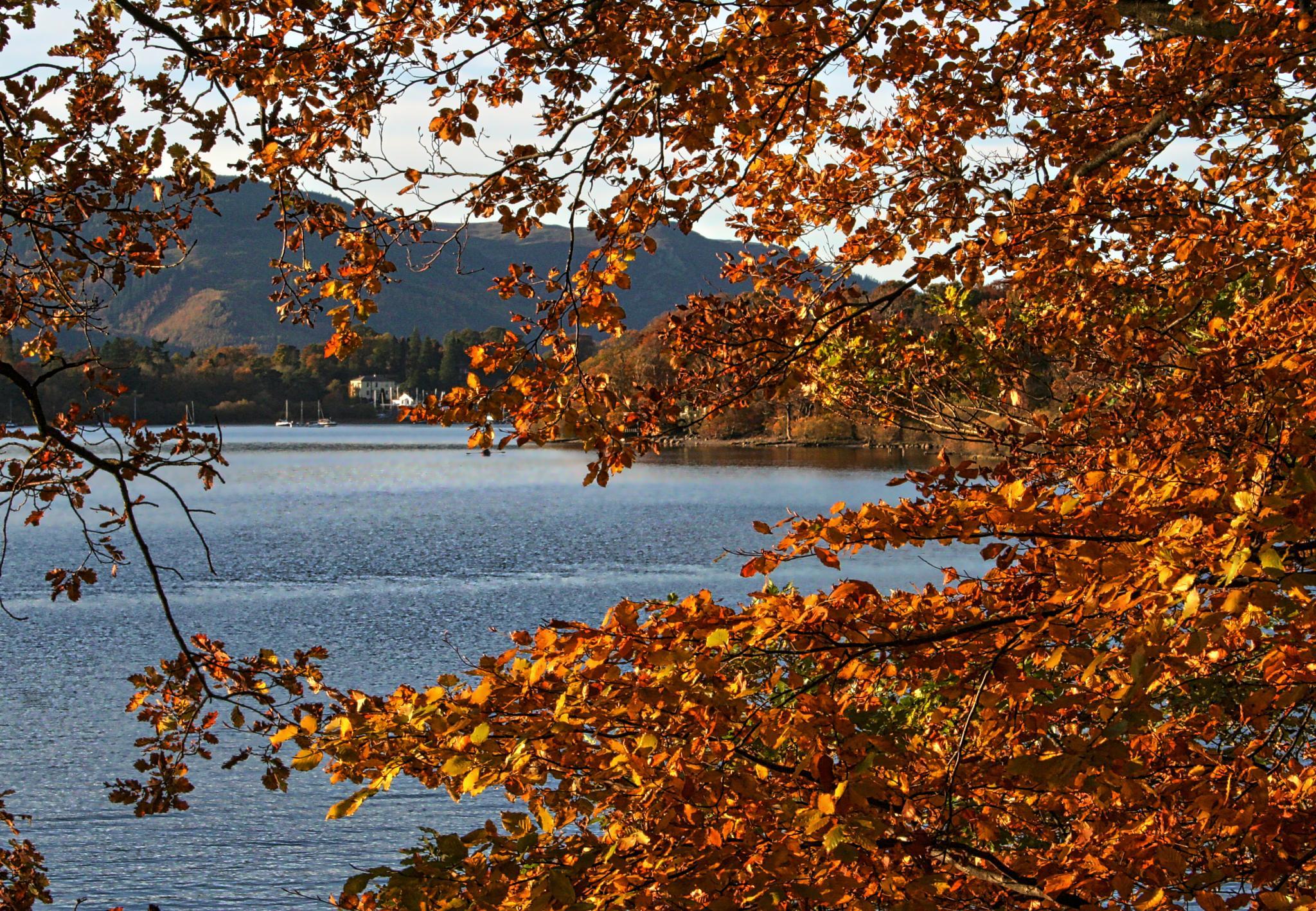 autumn in lakeland by steveworrll