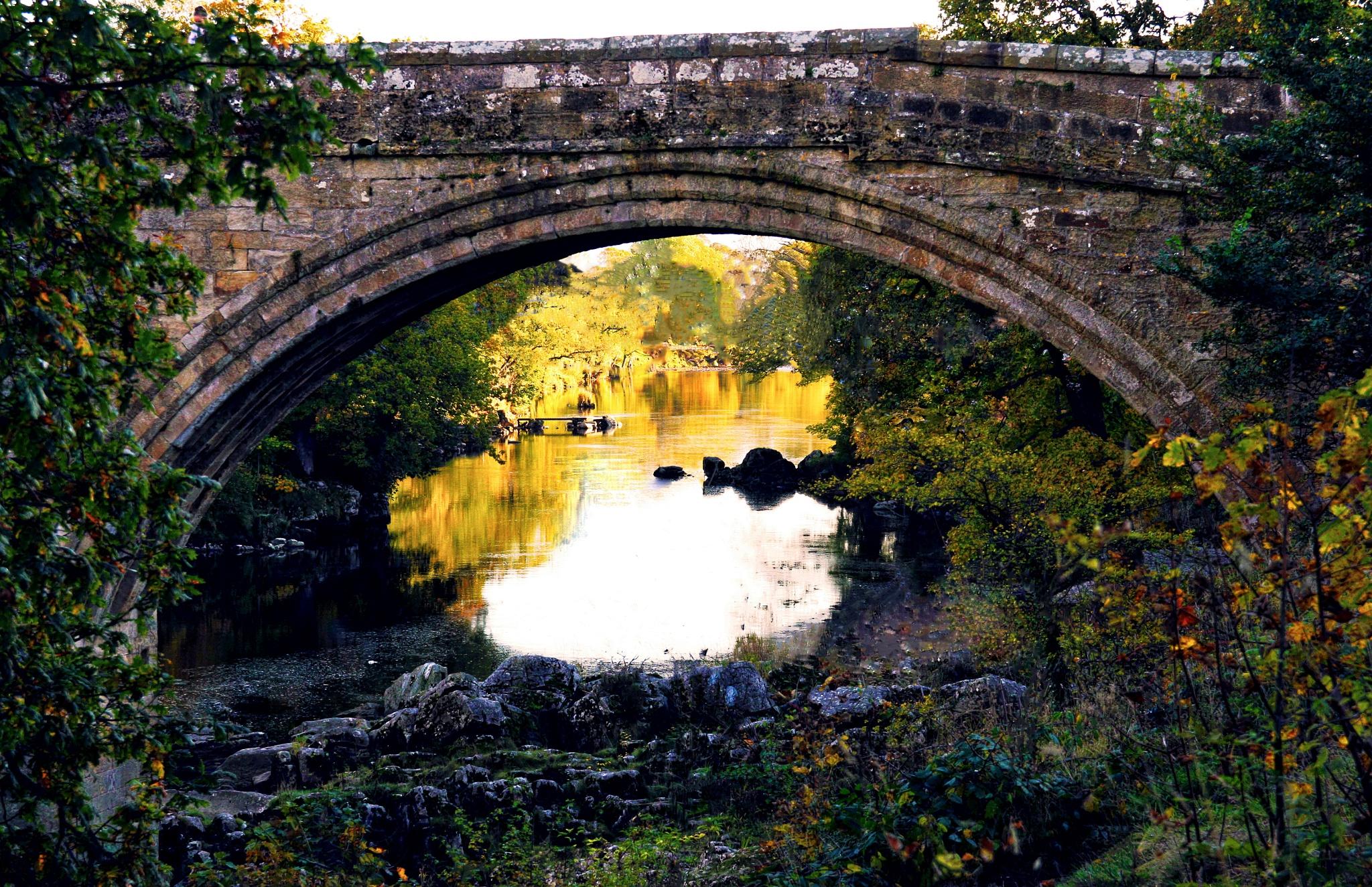 a 1370 bridge by steveworrll