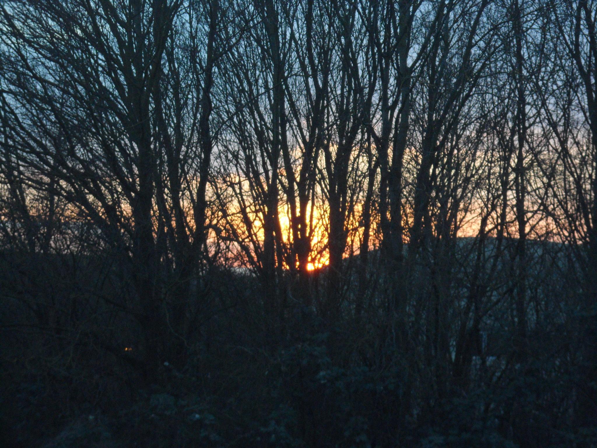 sunsetting by BeverleyForsyth