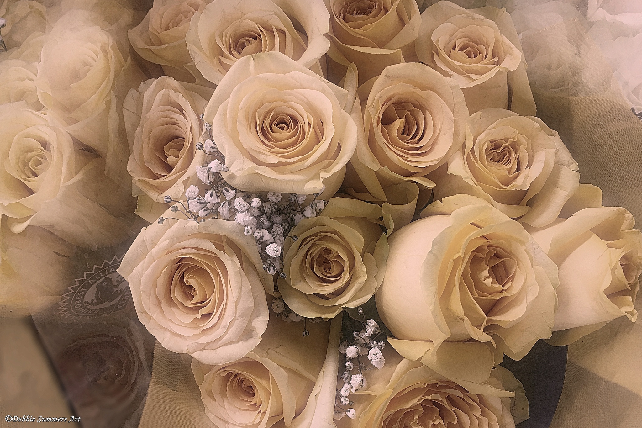 Antique Roses by DebbieSummers