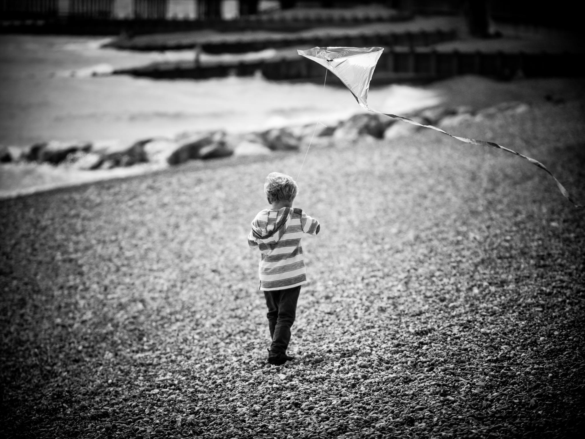 Let it Fly by Alan Wilson