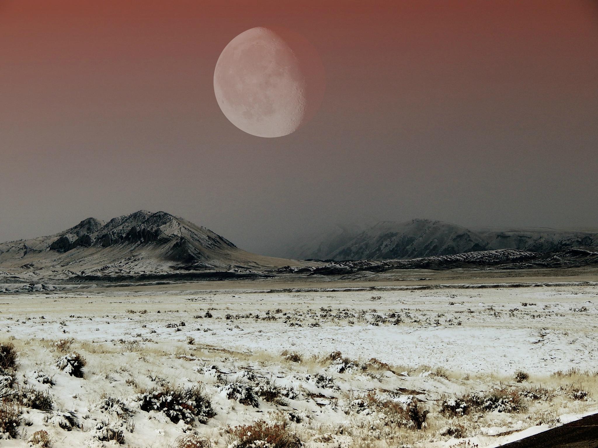 Wild terrain by SerenaMemering