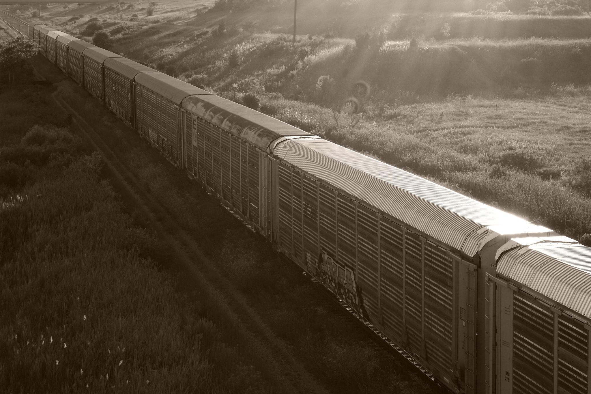 Sunshine Train by ʎpɐן uɐıpɐuɐɔ