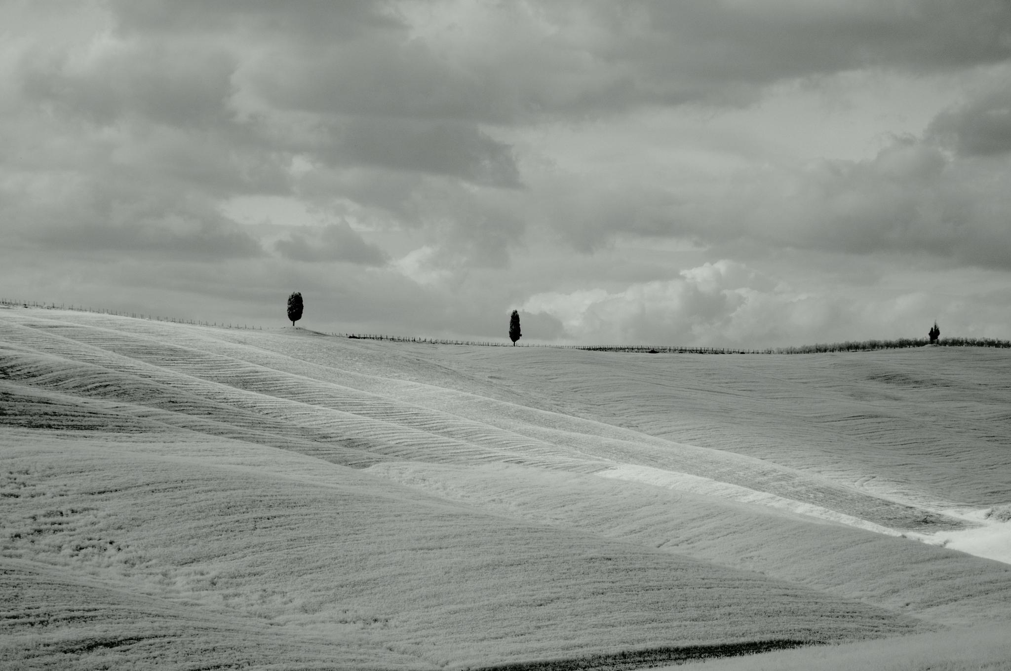 Rolling Hills by trevor keville