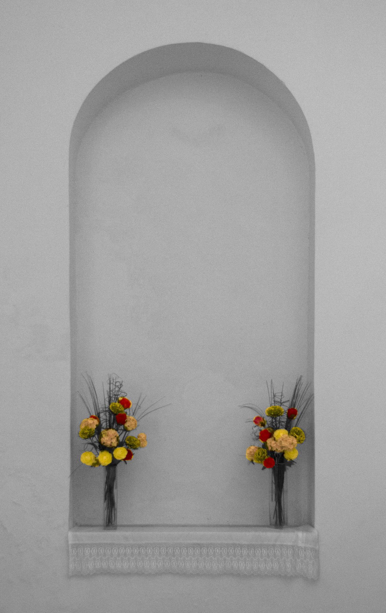 Flowers by trevor keville