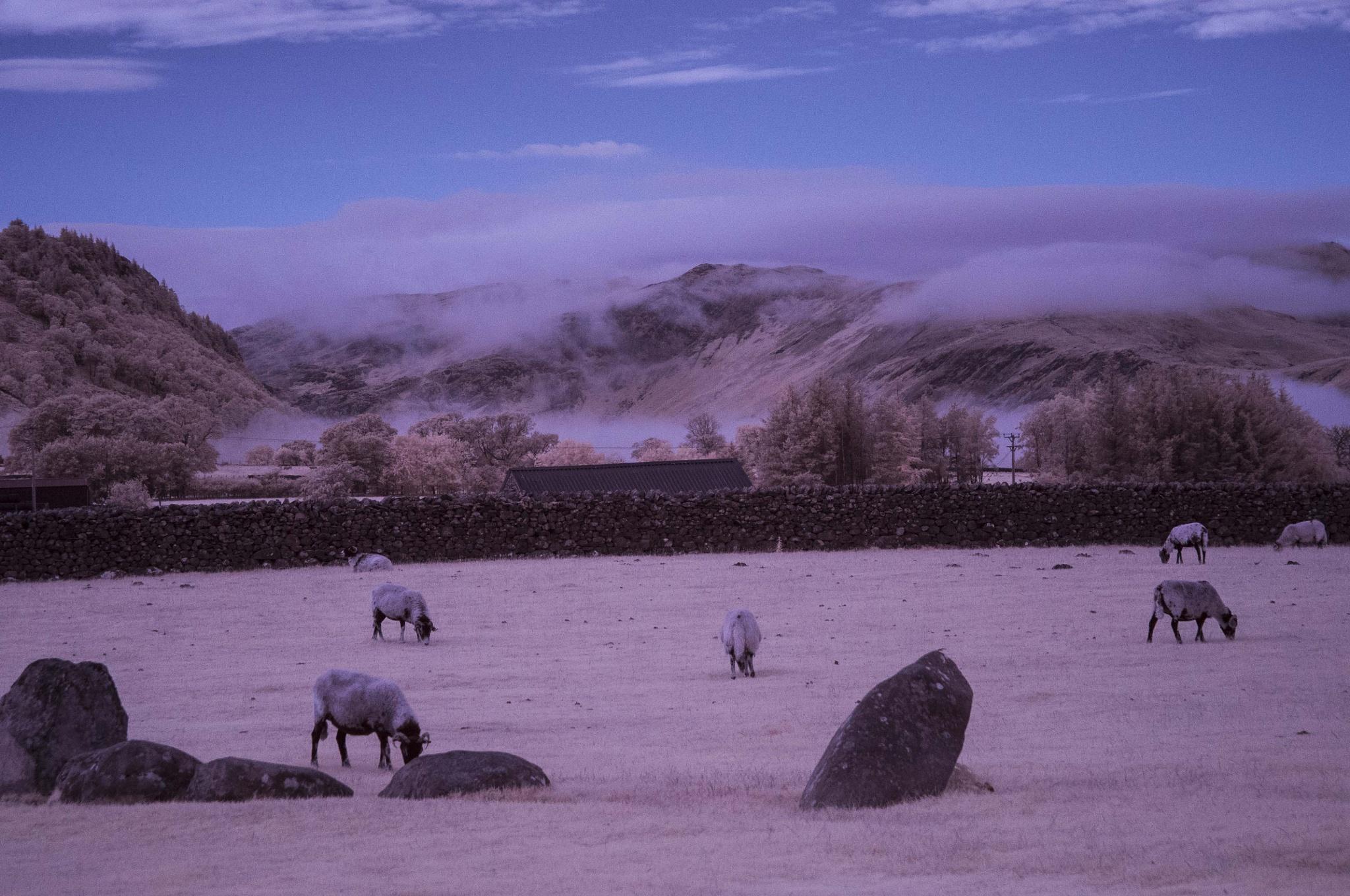 Castlerigg Mist by trevor keville