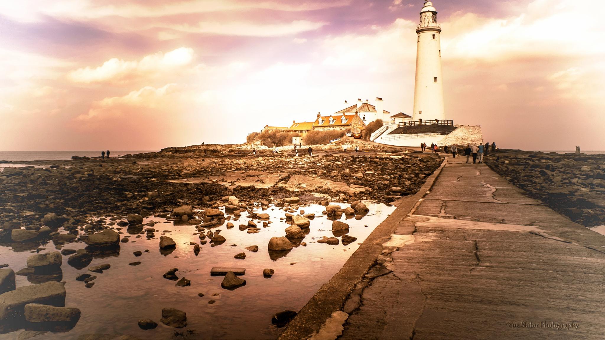 St Mary's Lighthouse by Creative Sense Photography
