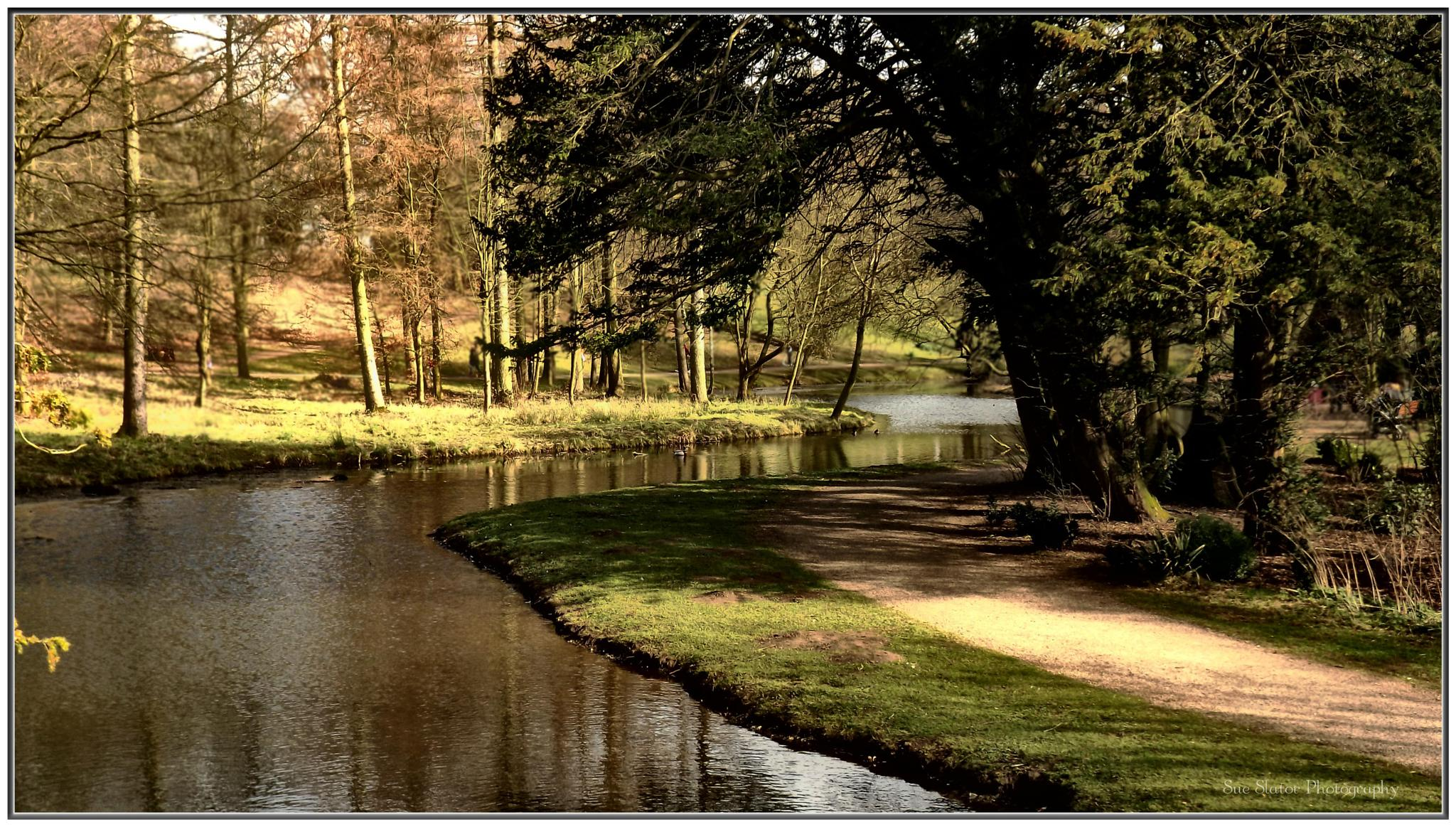 Hardwick Country Park by Creative Sense Photography