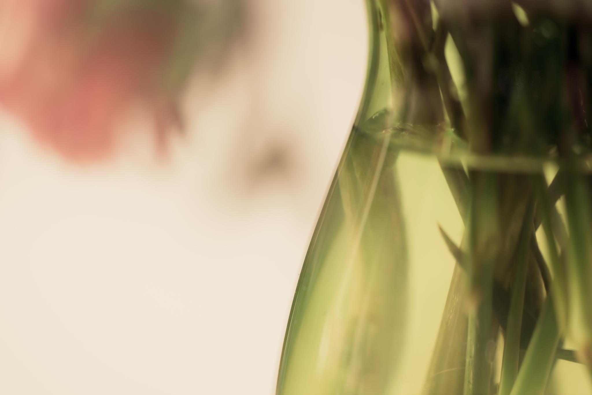 Flower Vase by Cindy Deeg