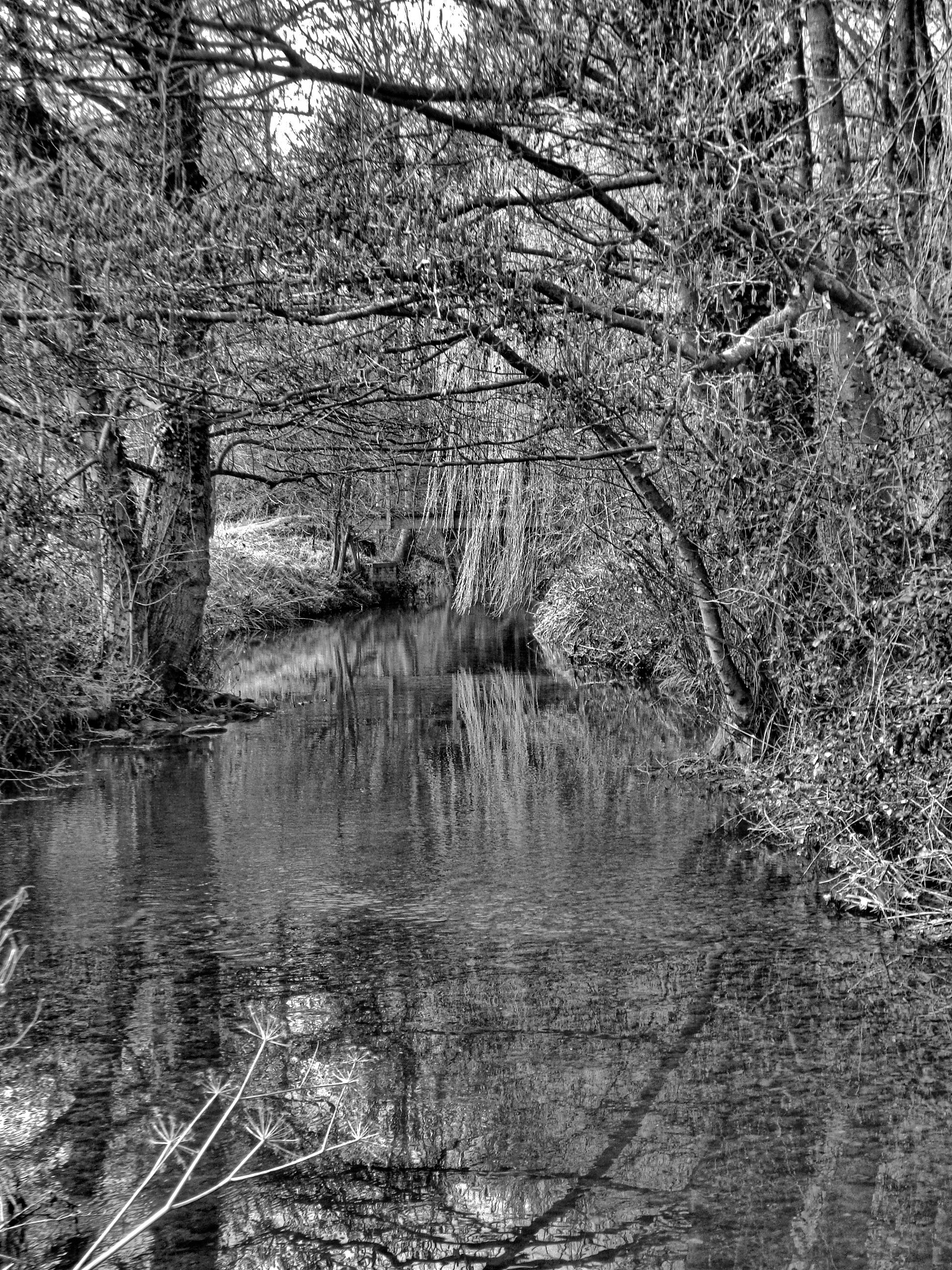 The River by Simon Hill