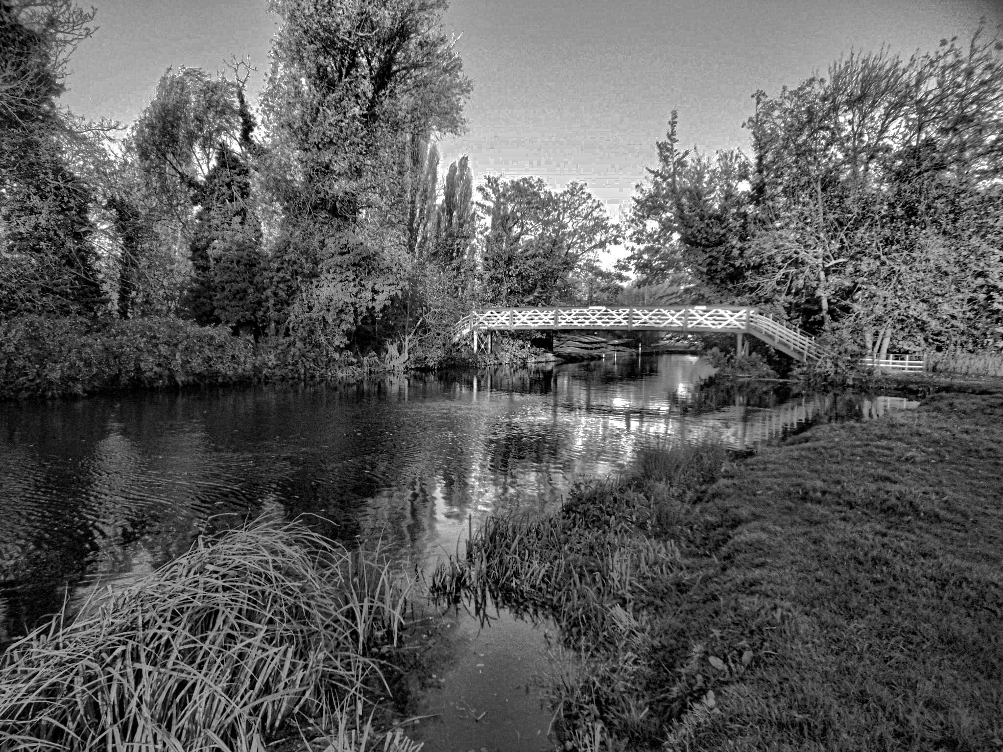 The Bridge by Simon Hill