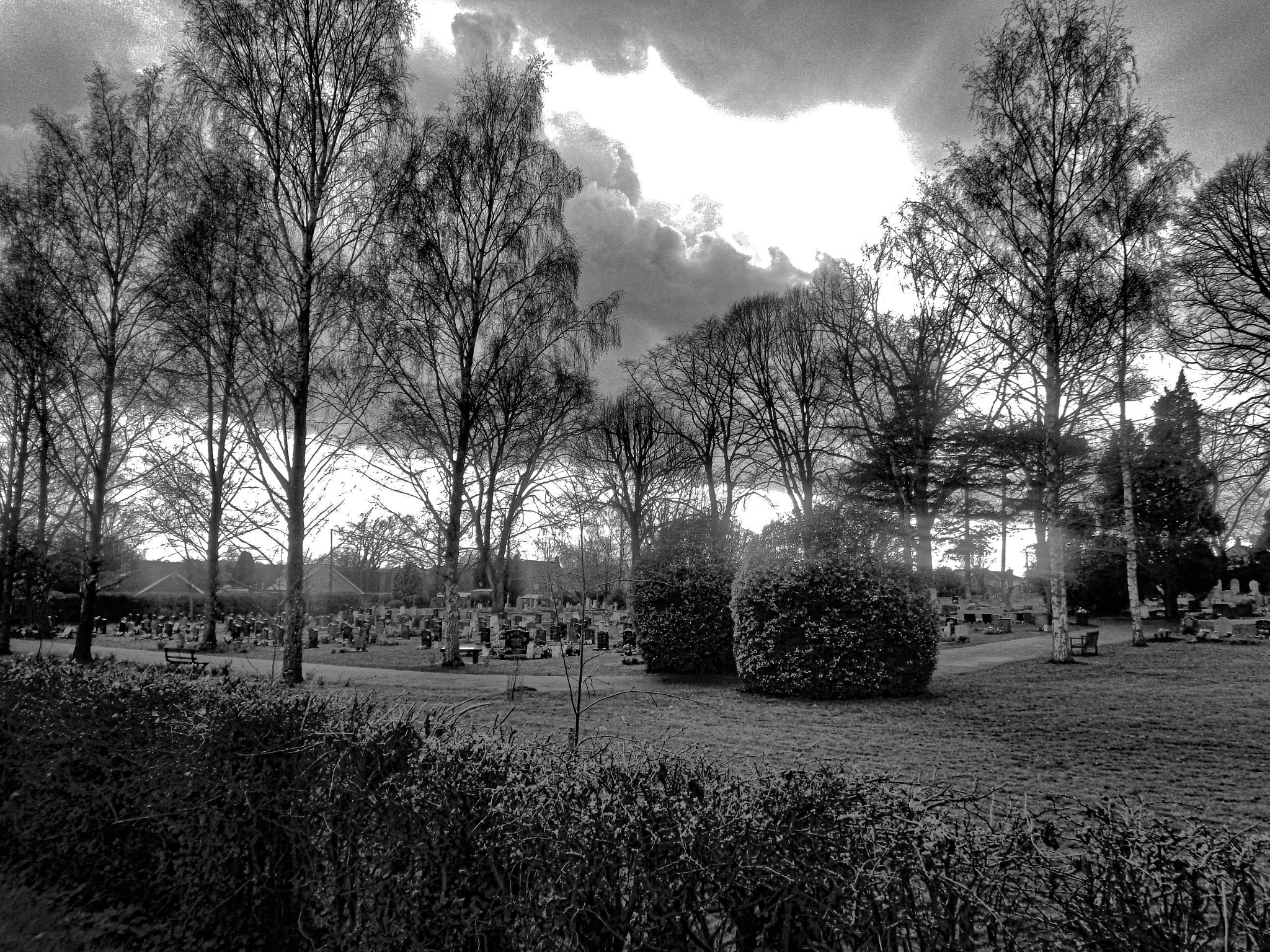 The Cemetery by Simon Hill