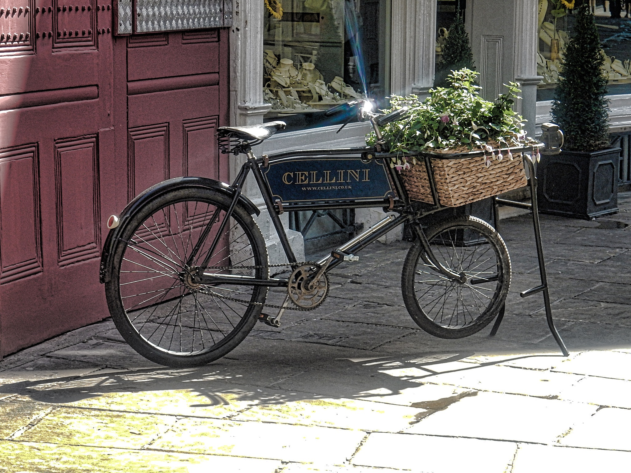 The Bicycle by Simon Hill