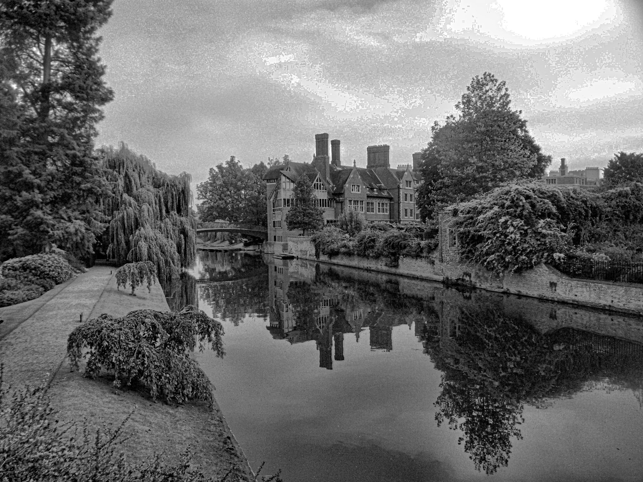 The Cam by Simon Hill
