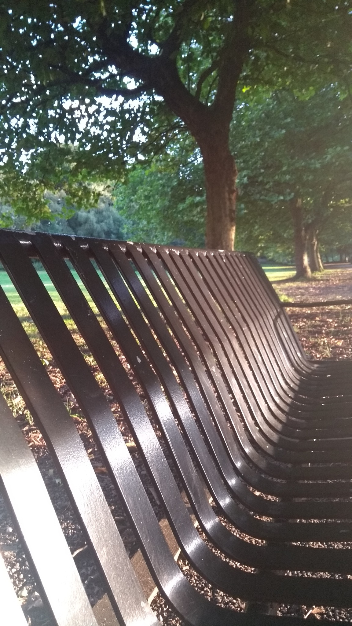 bench by mike.pope.129