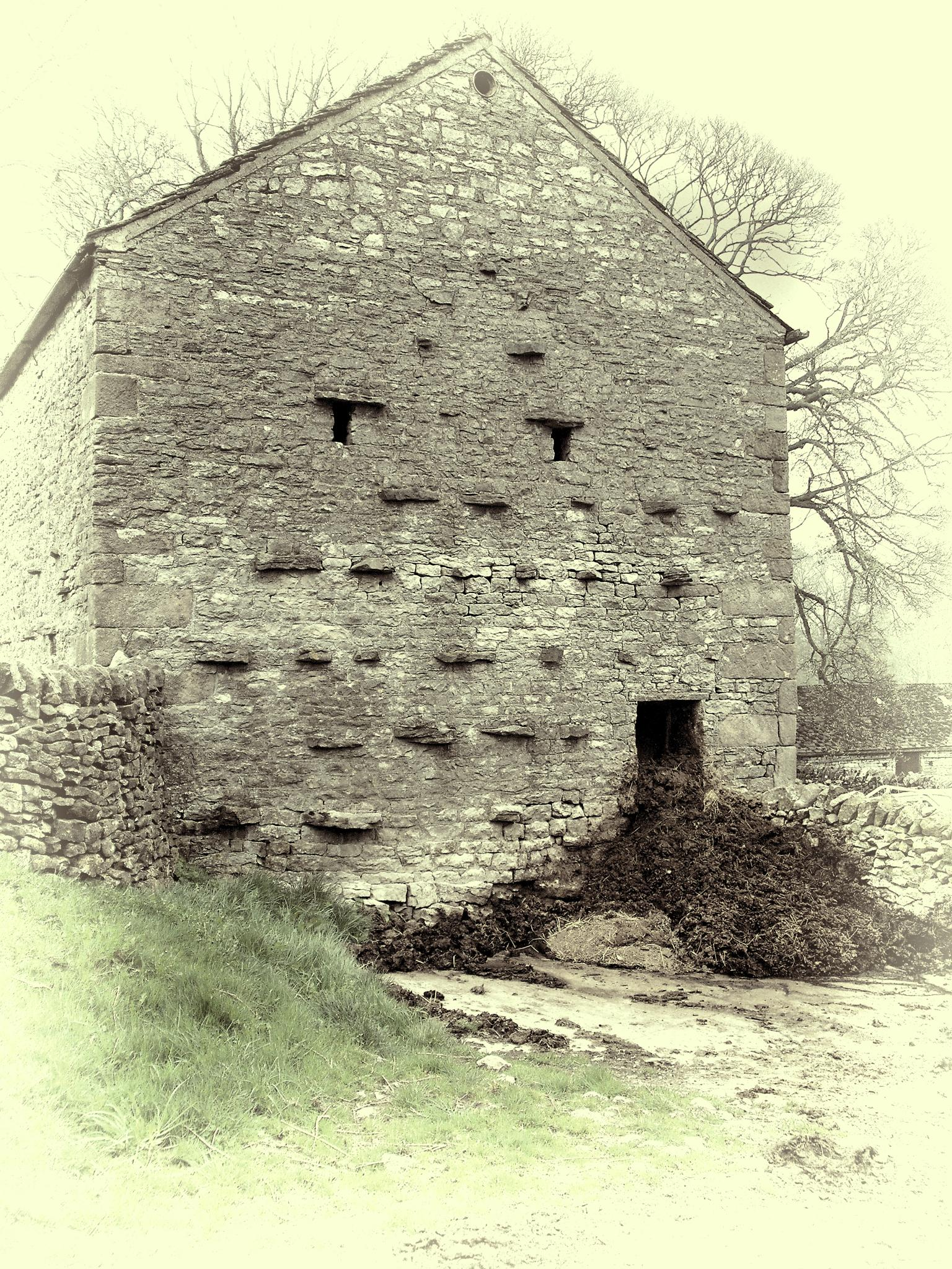 Old Barn After Mucking Out by Dave Fisher