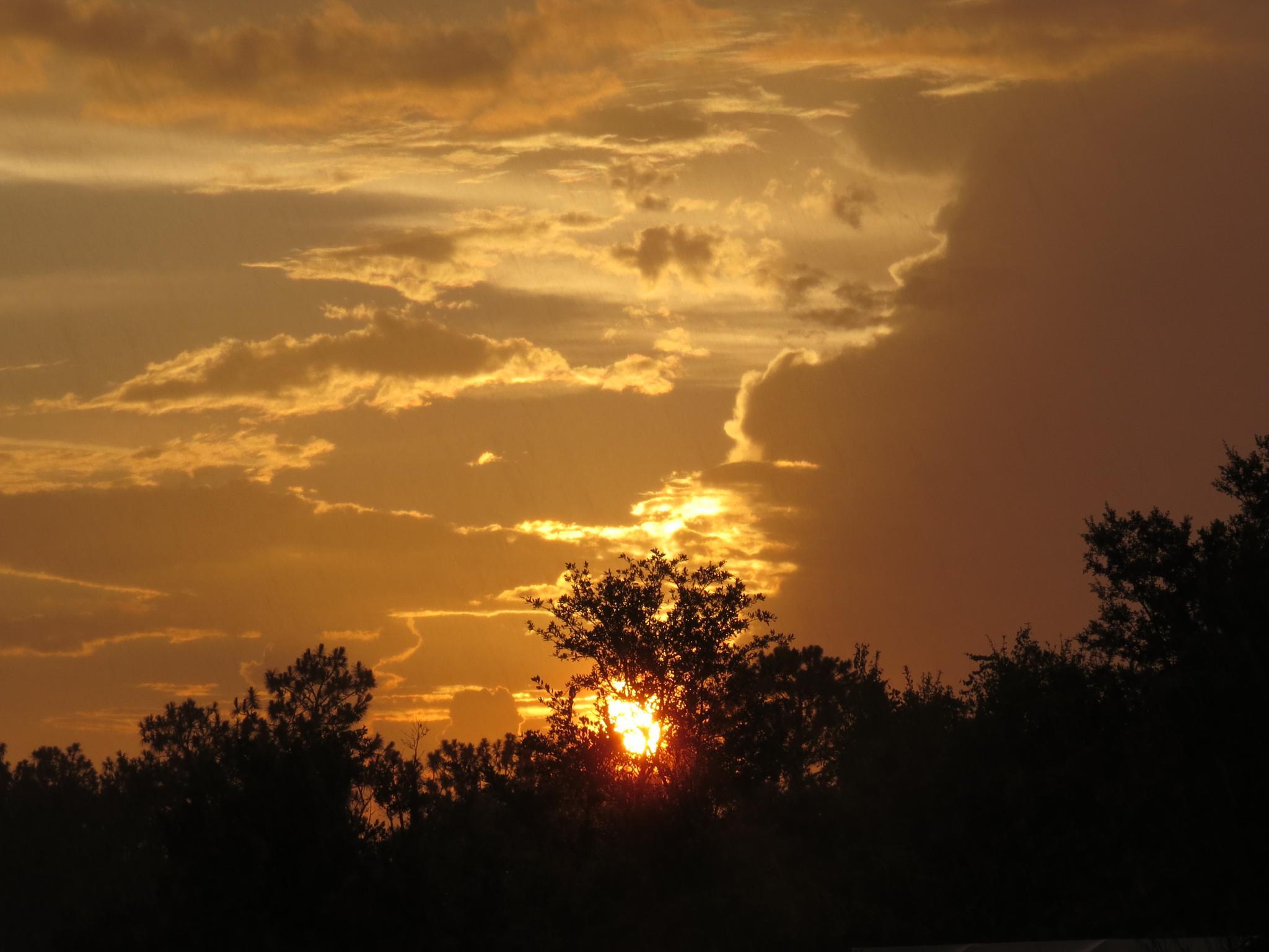 Sunset by eve.alaxanian