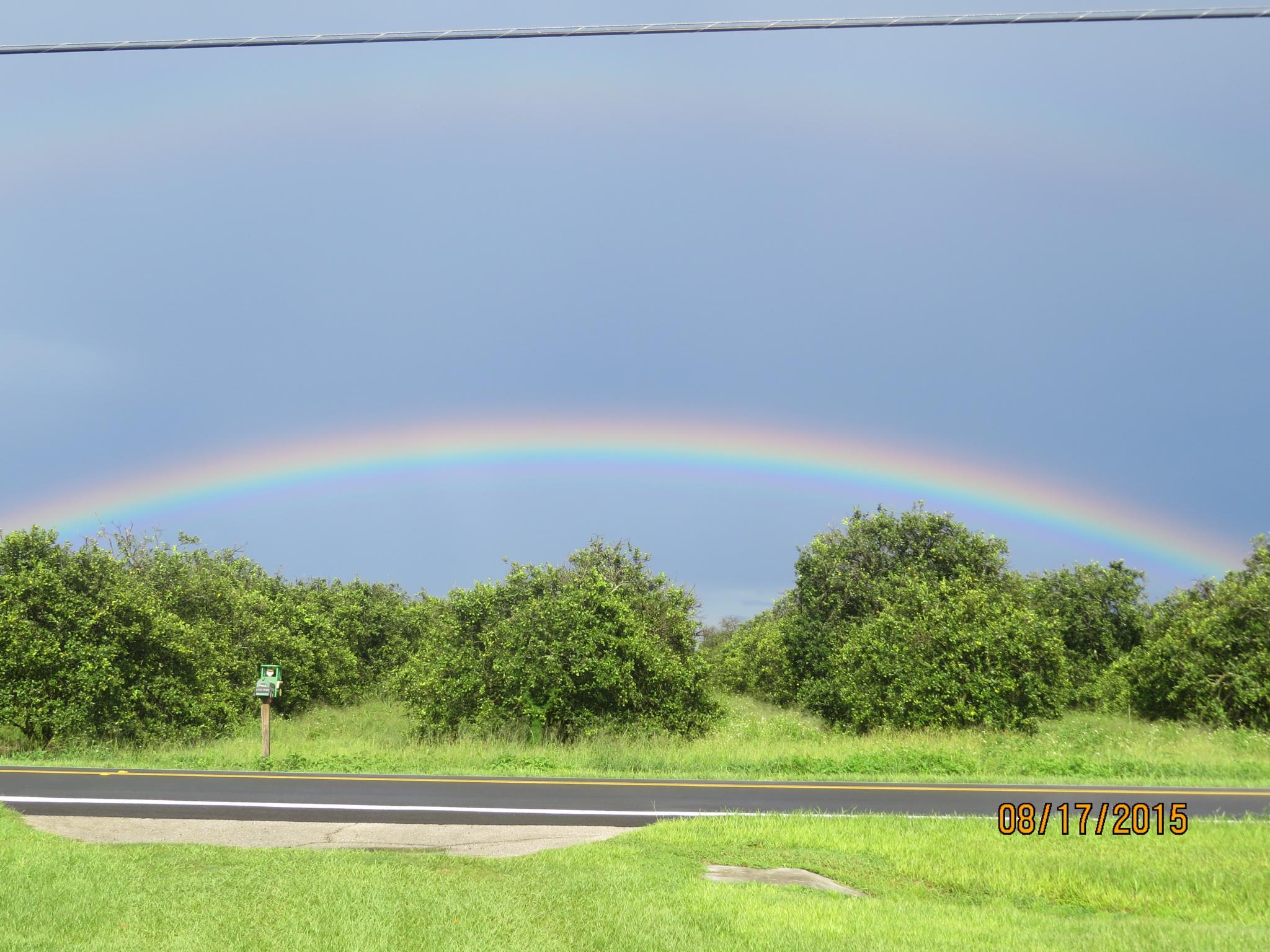 Rainbow by eve.alaxanian