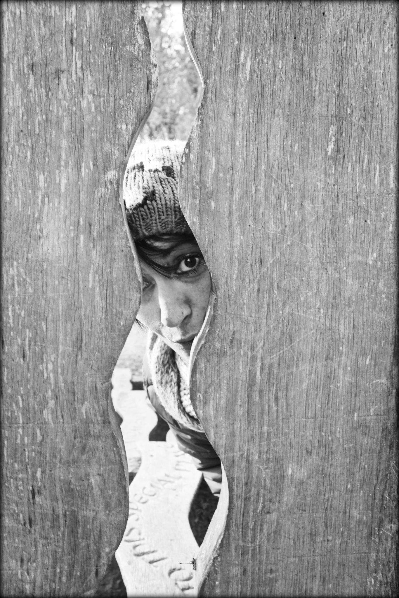 peek a boo! by mandy.norris