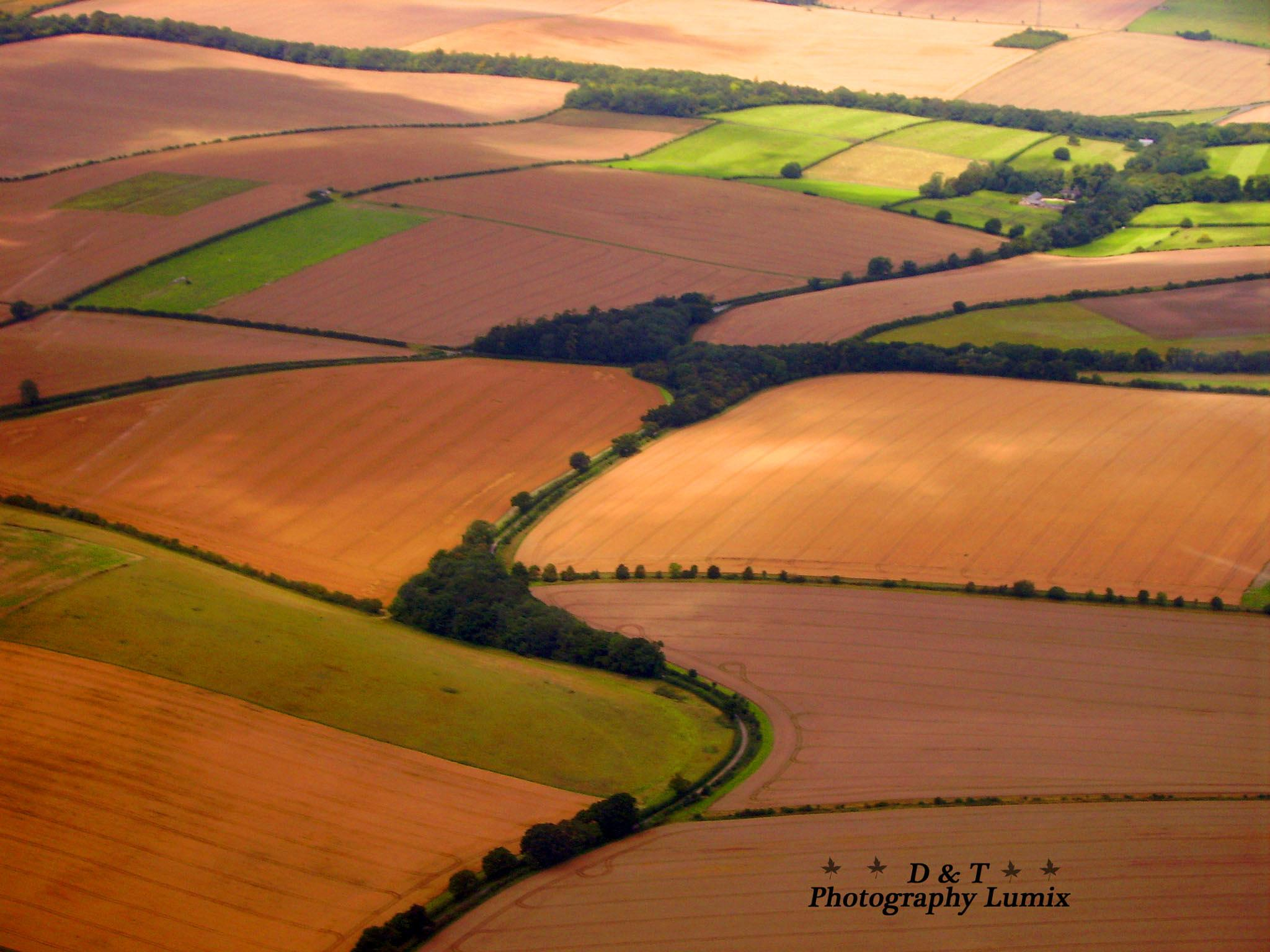 Wiltshire Countryside by Dave & Tatiana Williams