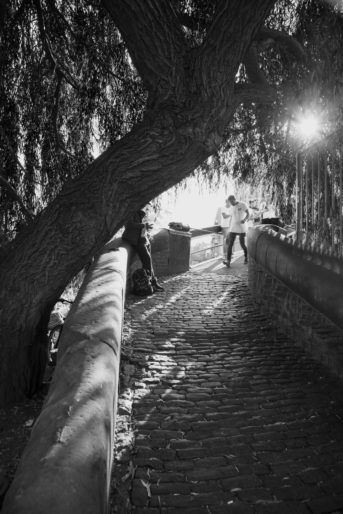 Camden Lock by helenwilliams0773