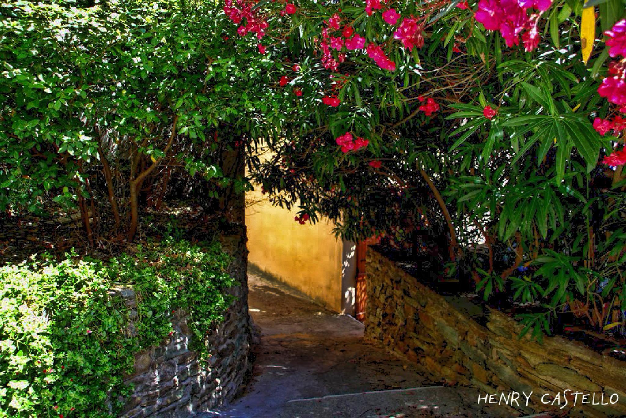Une ruelle du village de Mèria. by henry castello