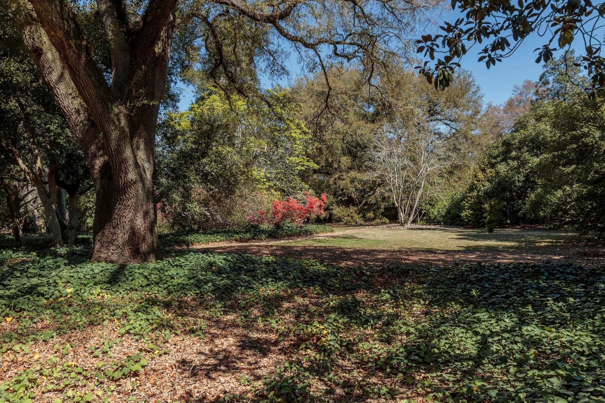 Hopeland Gardens, Aiken SC by Martha Glotzhober