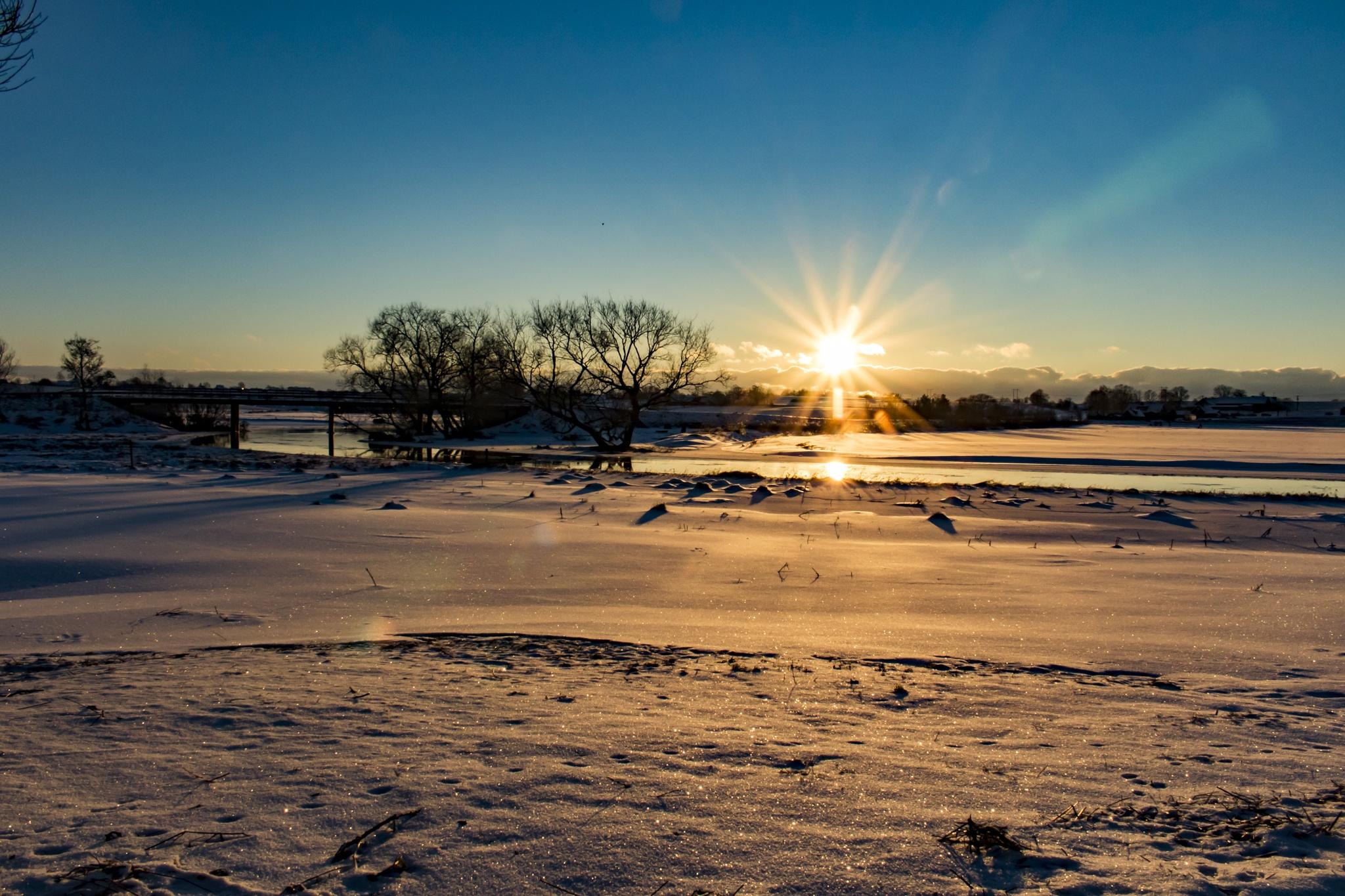 Winter by Daniel Paulsson