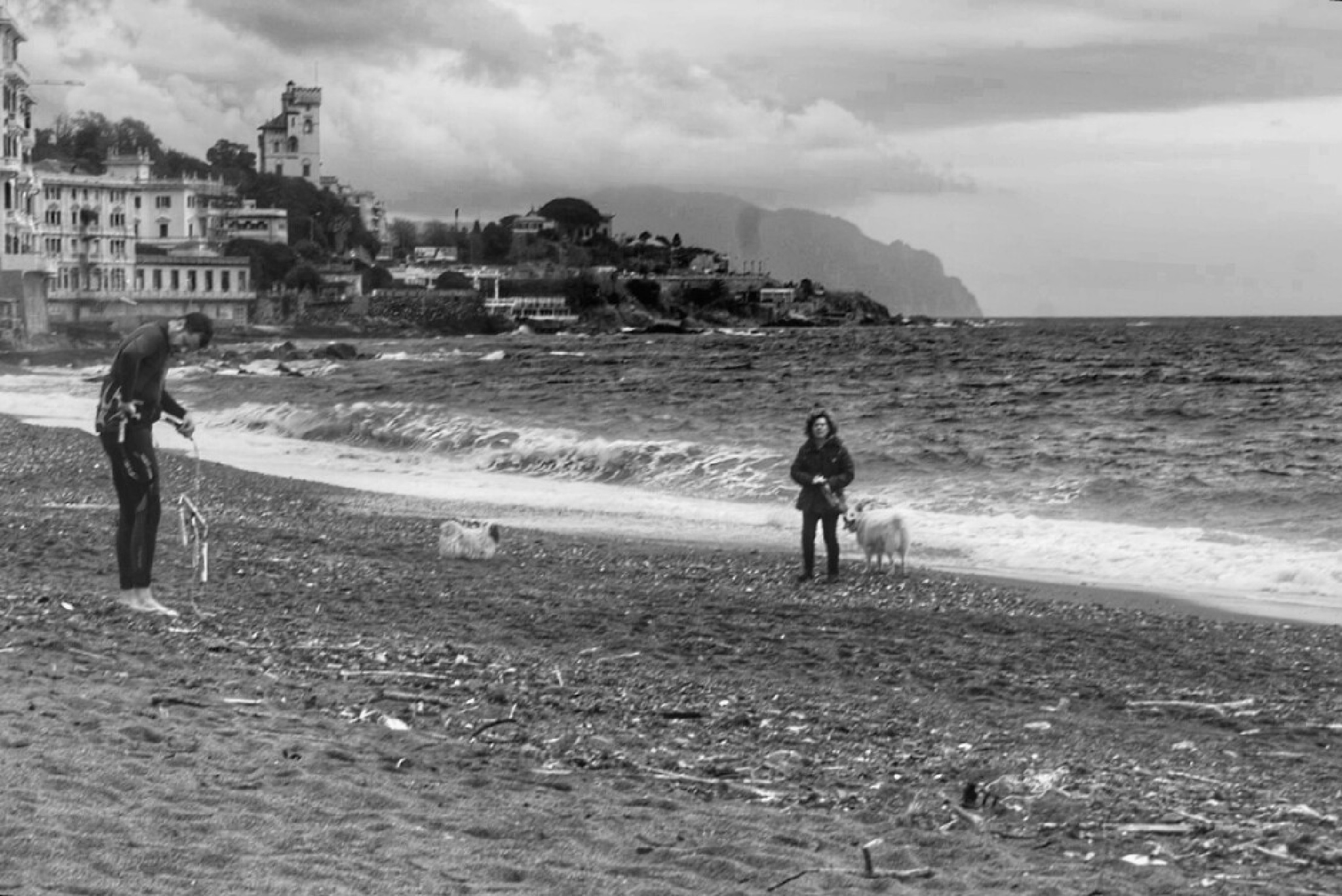 """"""" Mare d' inverno""""  BW by danina65ge"""