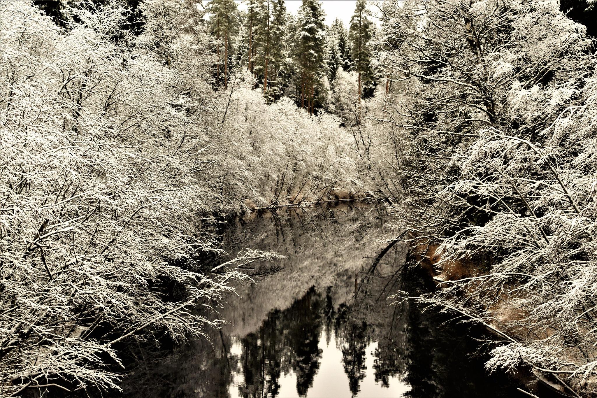 Februari -17 by tina.tomasson