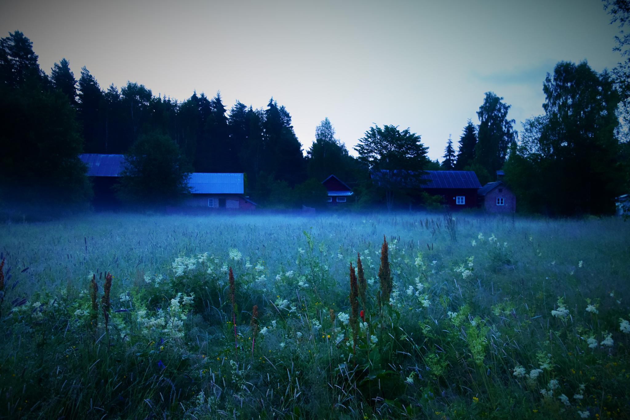 Early one morning by tina.tomasson