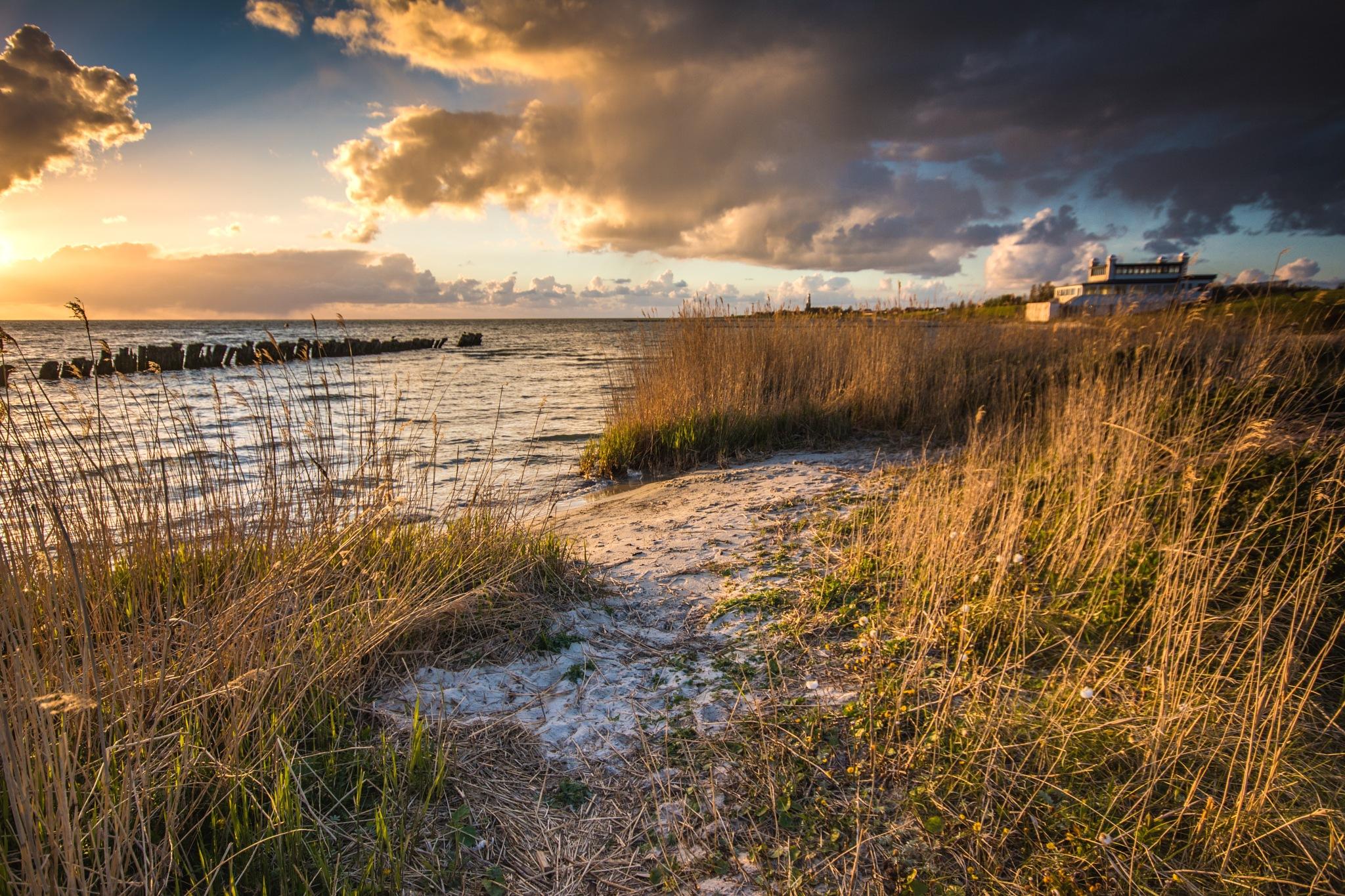 Golden hour Friesland by TaraKiekt.nl