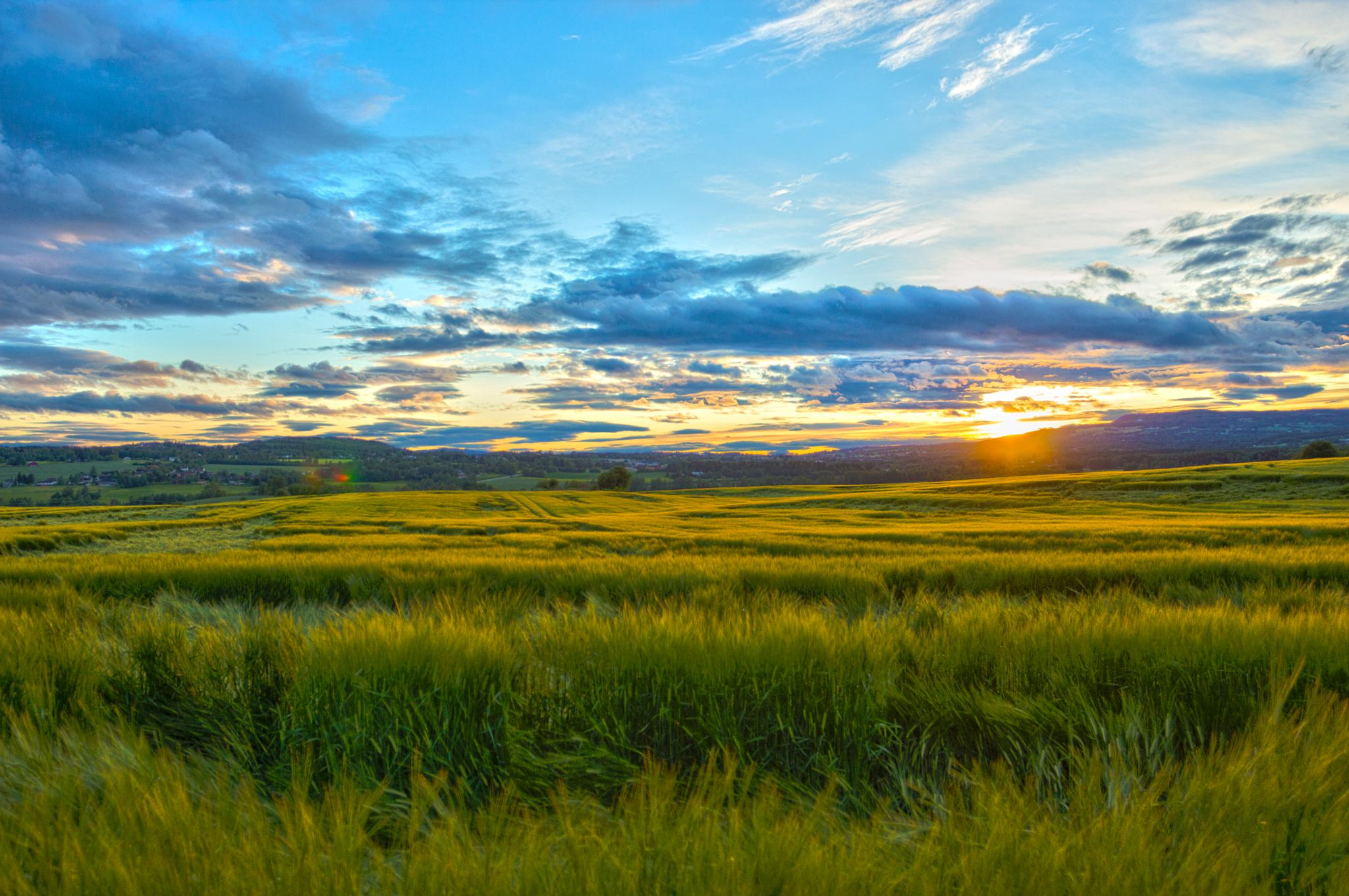 Norwegian Countryside Sunset by Caplino