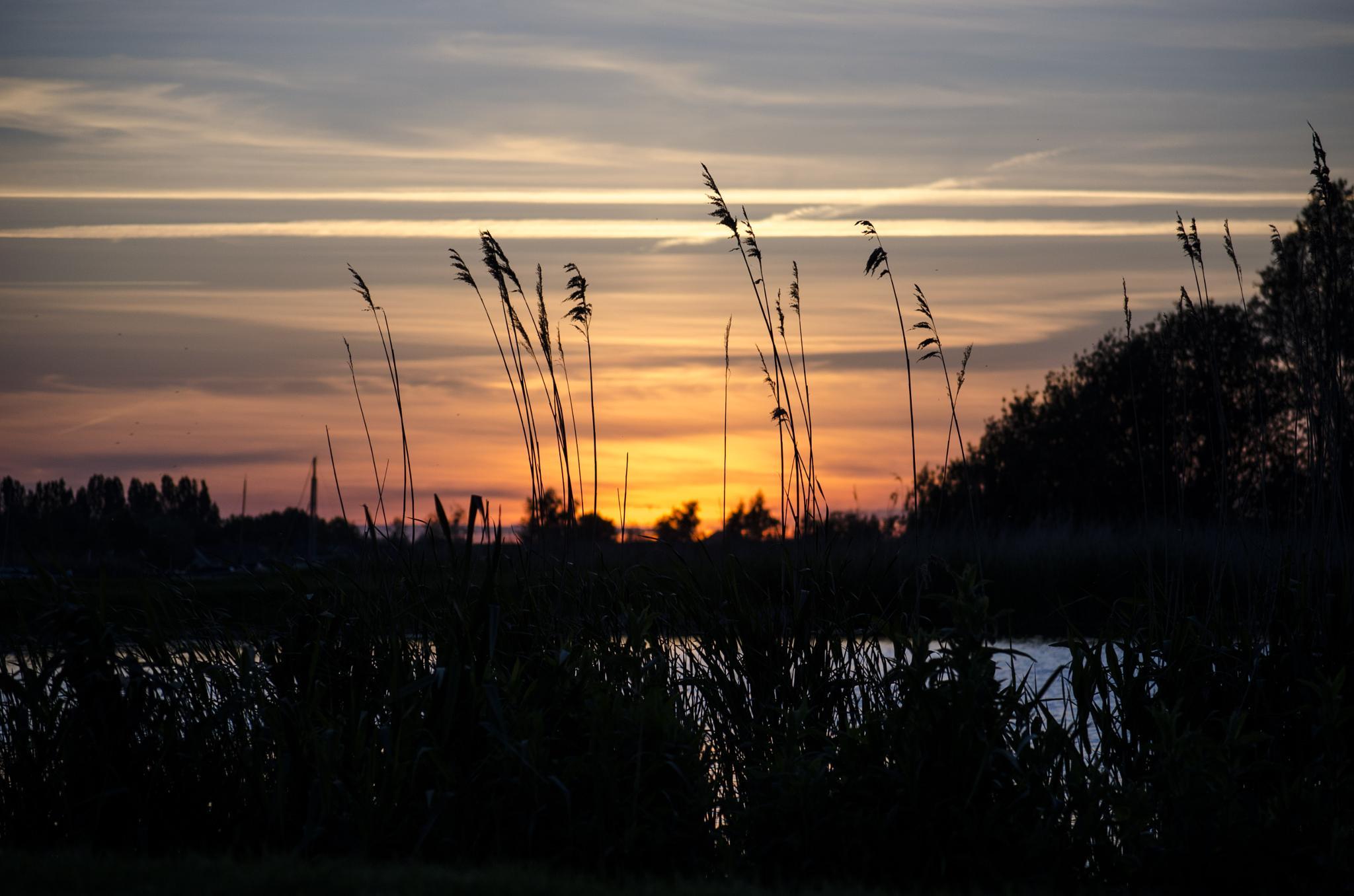 Lake Side sundown by Ibuller