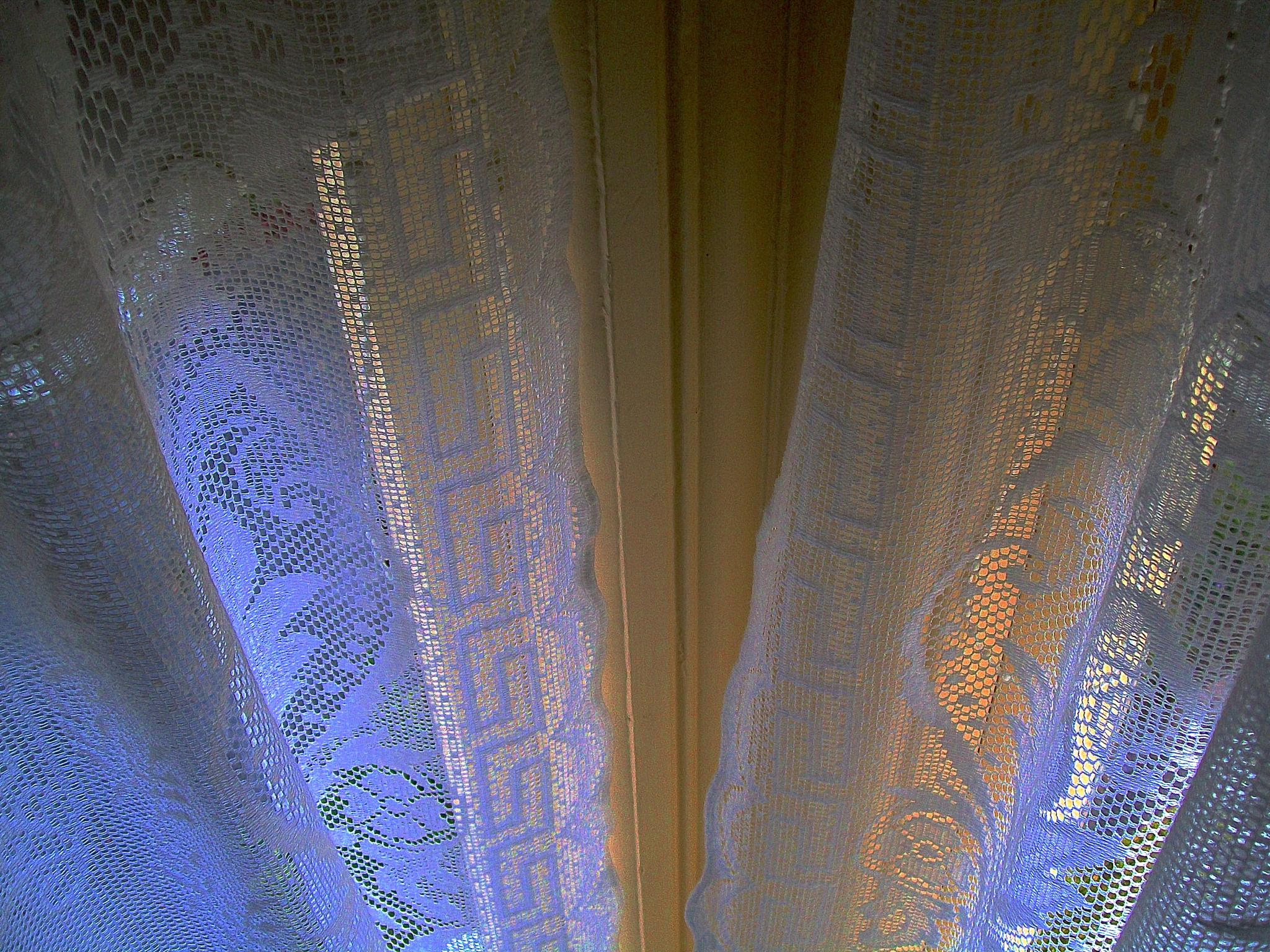 Ferndale Lace Curtains #1 by John Norman Stewart