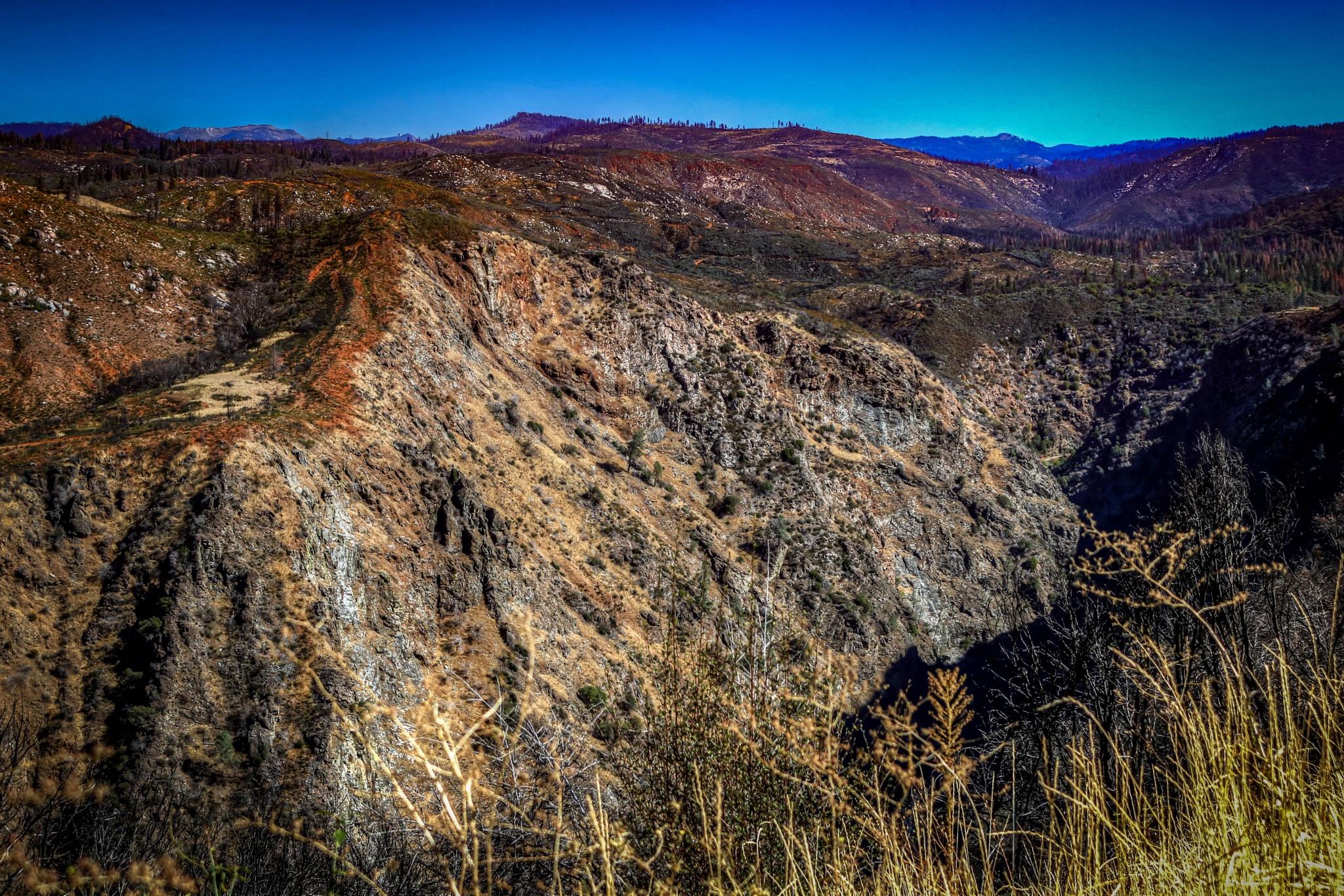 Sierra Foothills II by Catherine