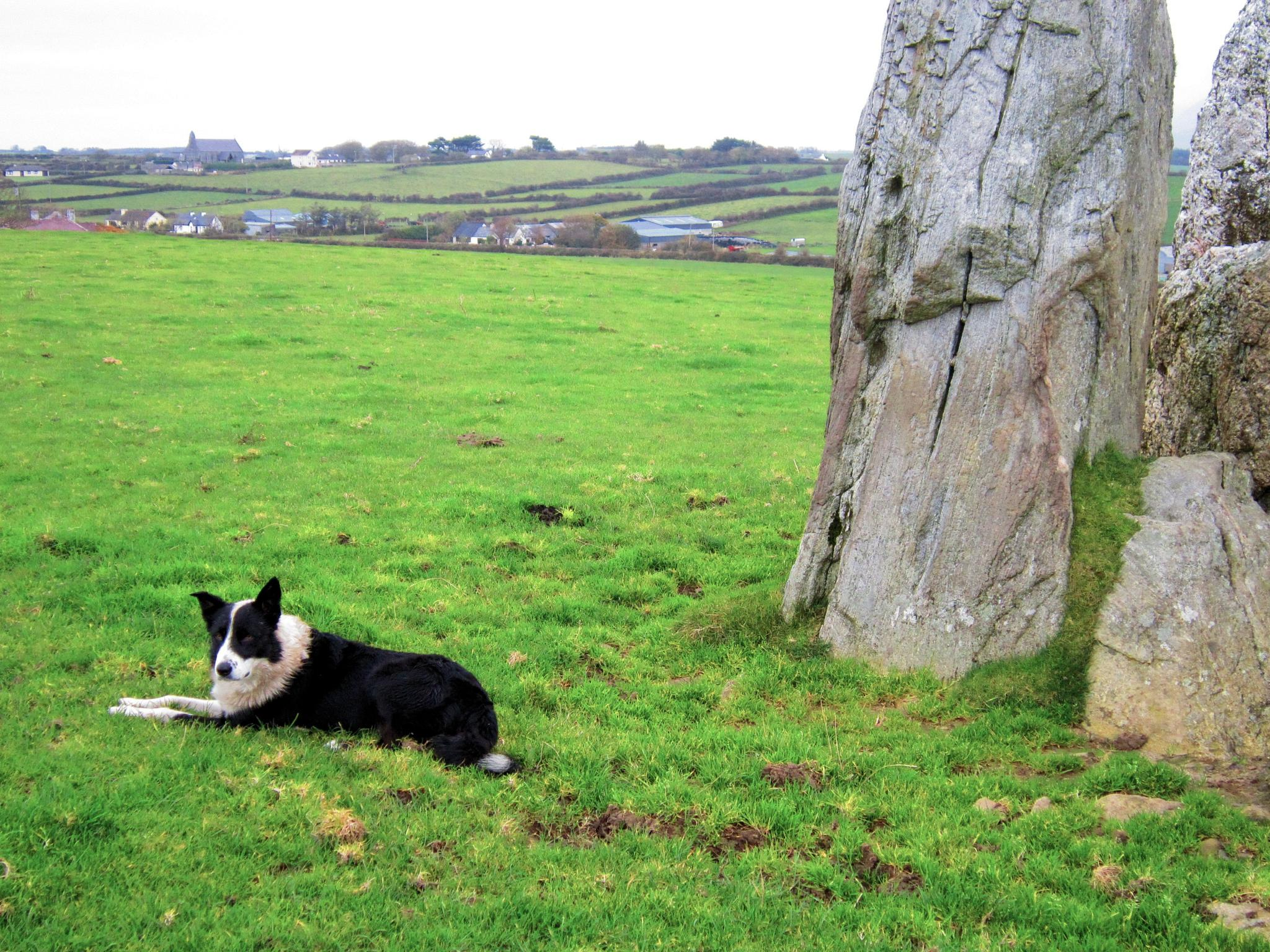 Guarding the Family Monolitic Rock Formation by Catherine