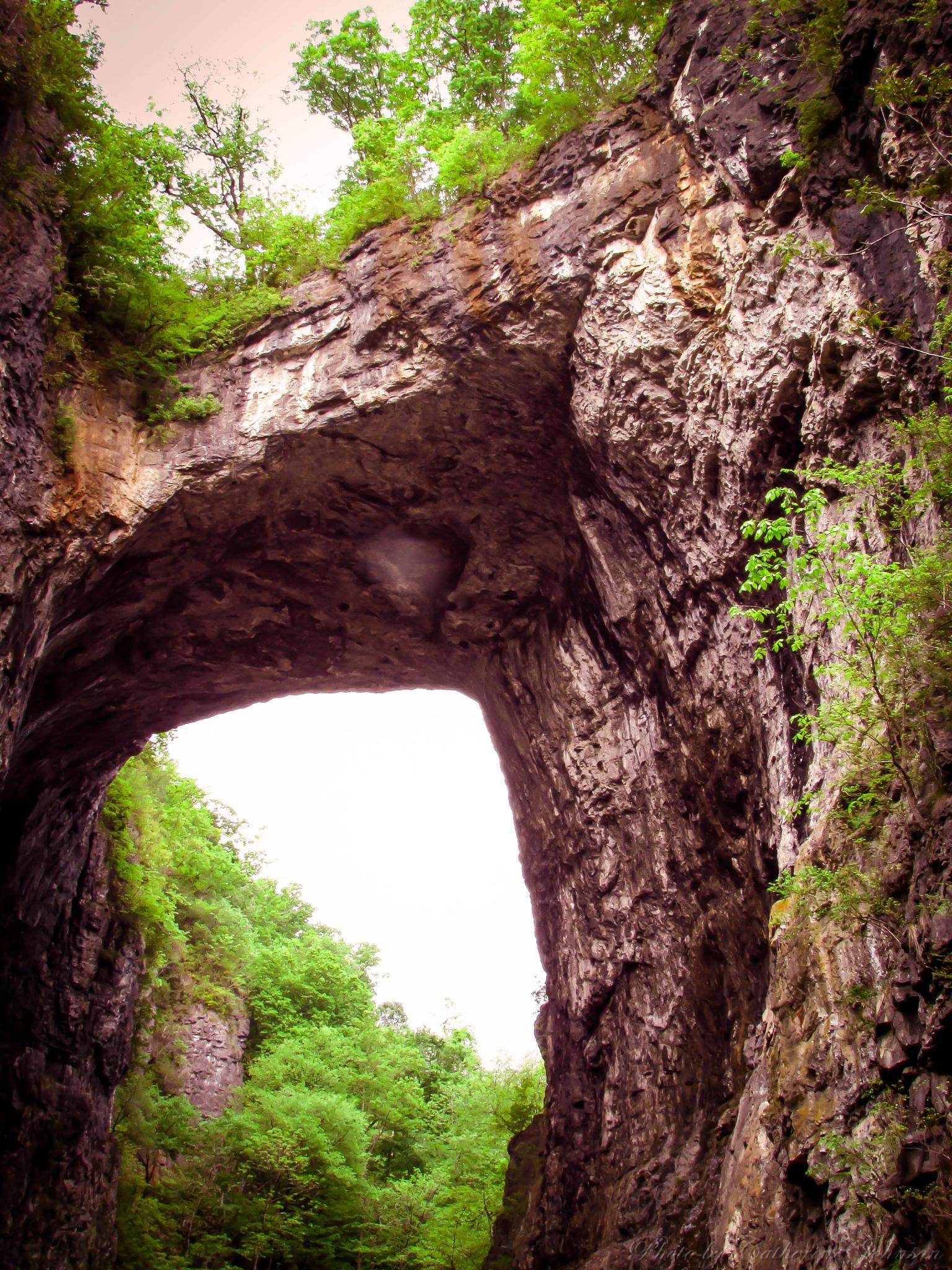 Natural Bridge by Catherine