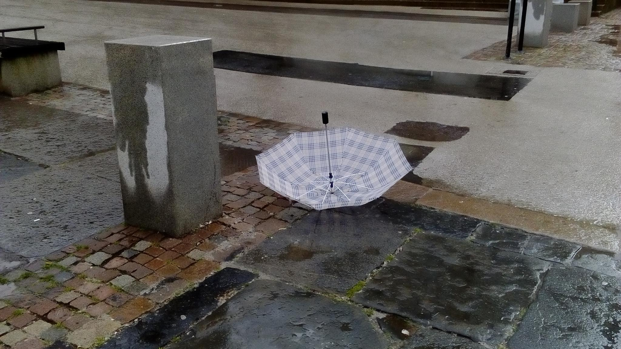 Lost umbrella by rolf persson