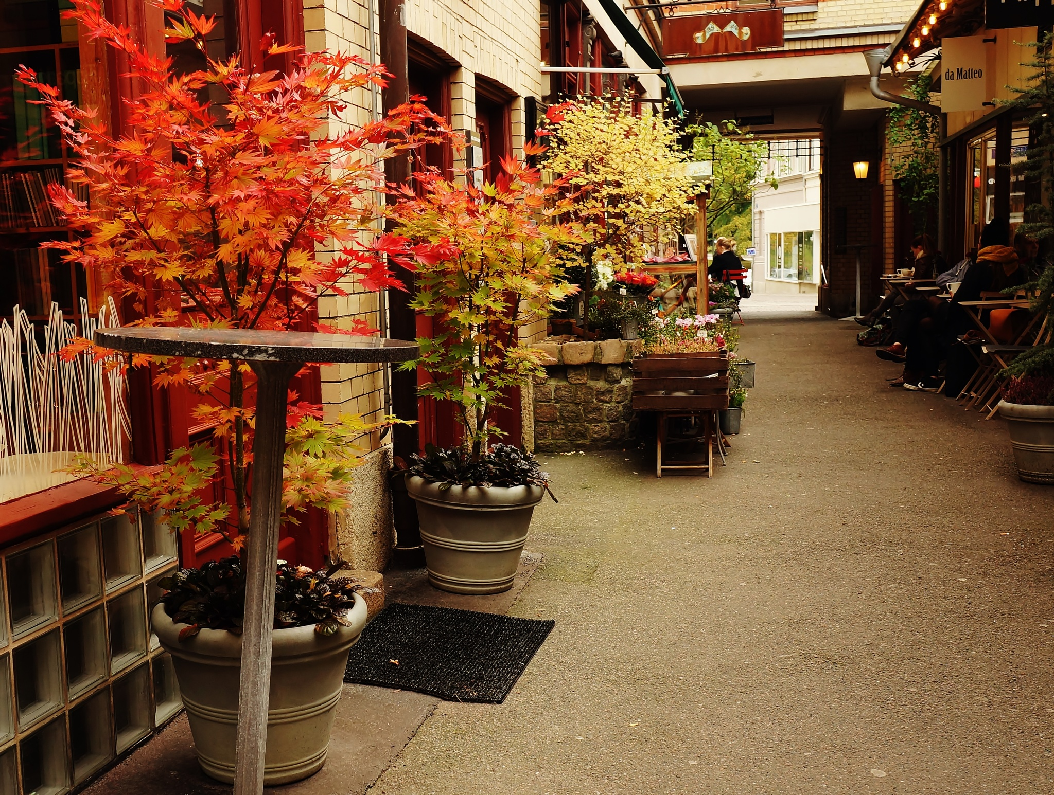 Autumn colours at the city galleria by rolf persson