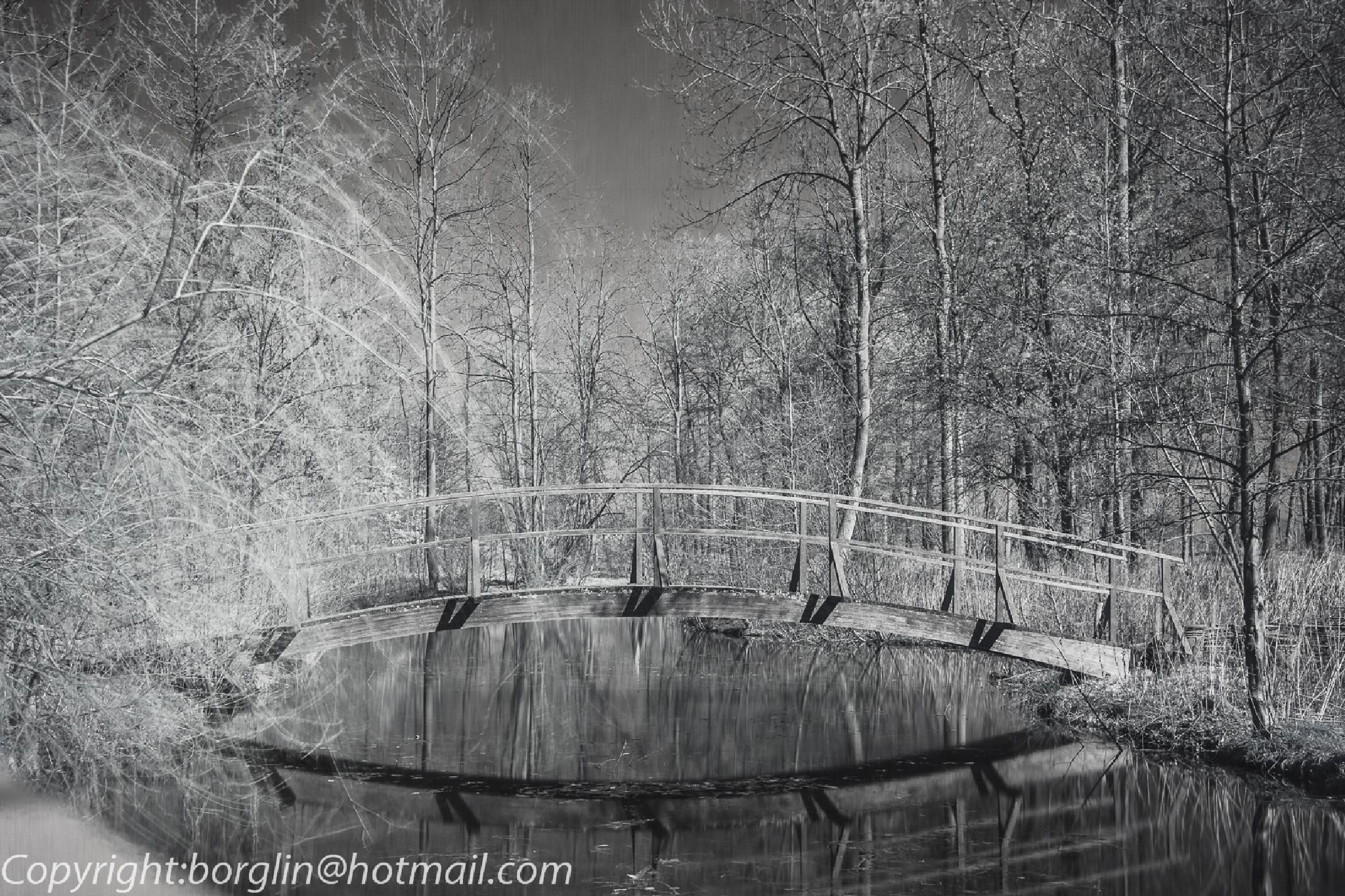 IR bild på Katrinetorp      Infrared picture of Katrinetorp by Mats Borglin