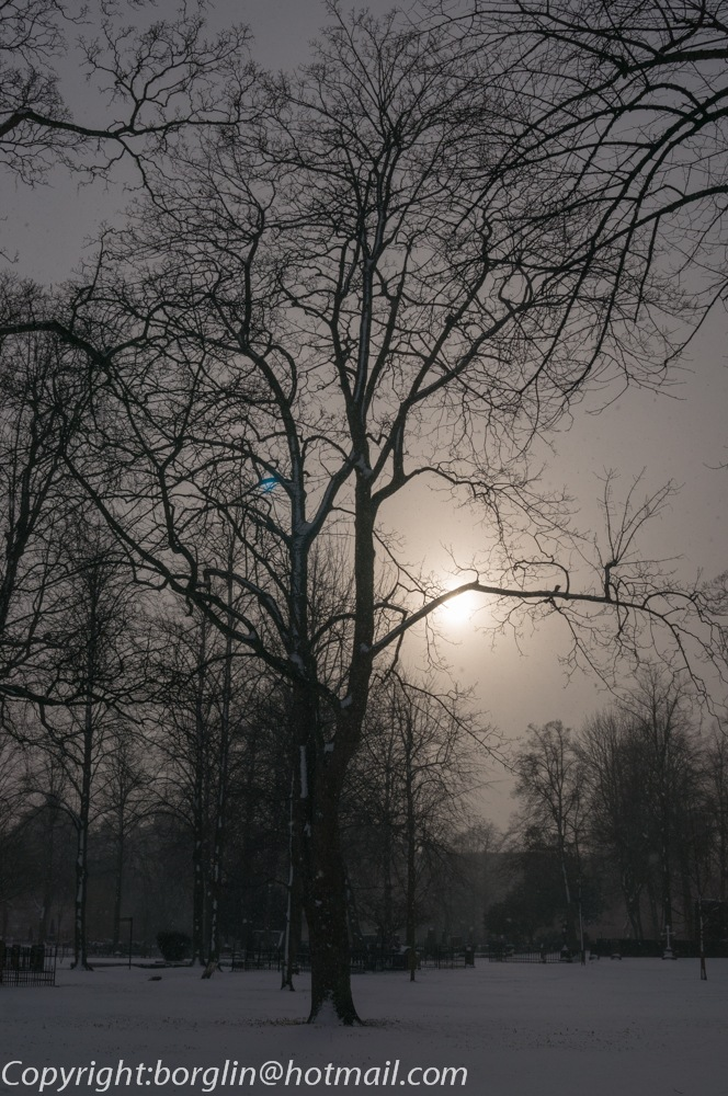 in the evening at the cemetery in fog by Mats Borglin