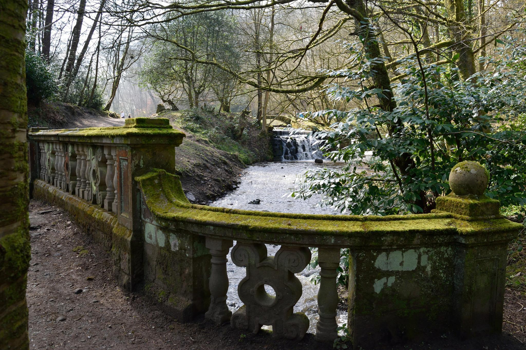 Sunnyhurst Wood - Darwen by GaryMHough